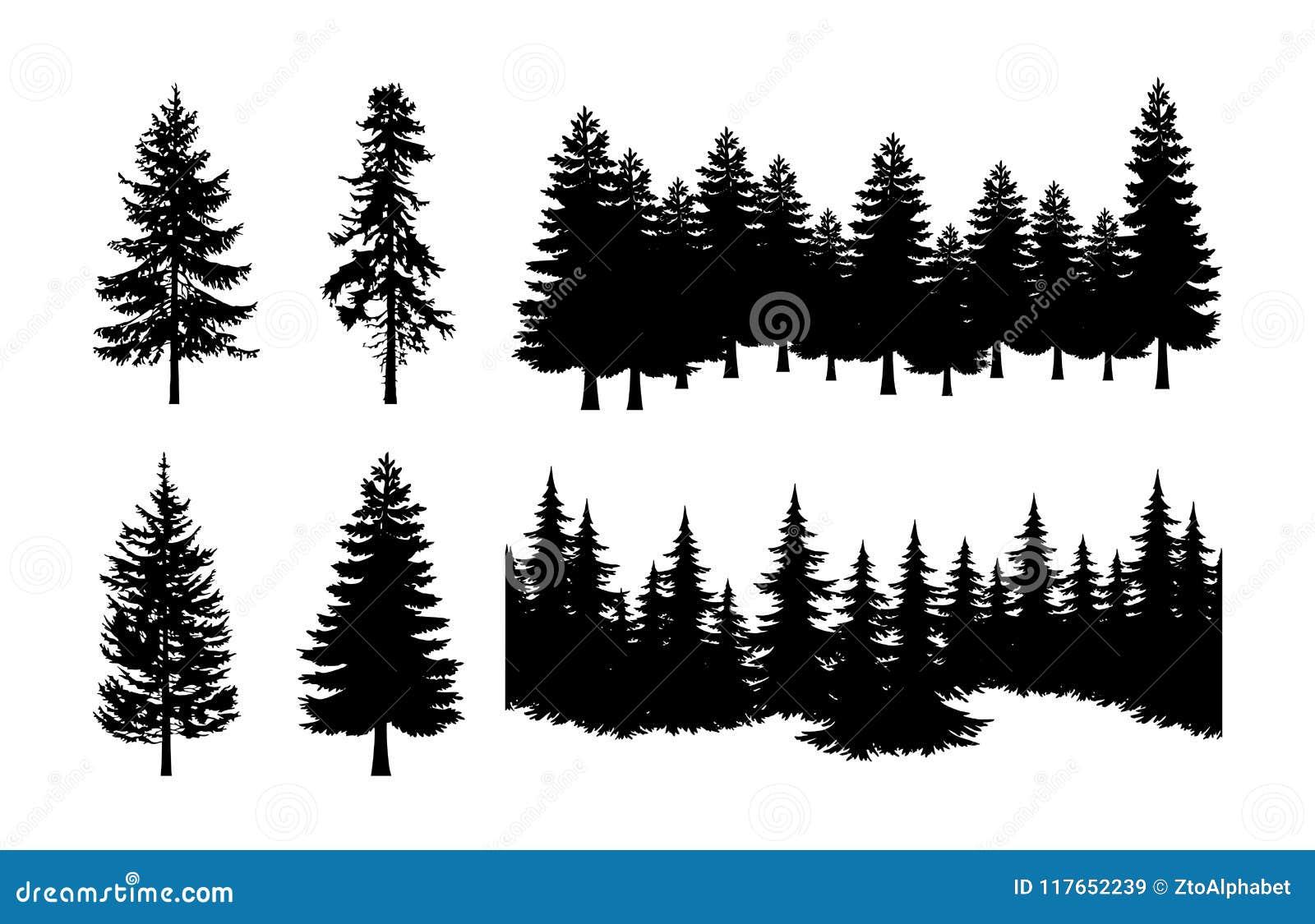 Διανυσματικό σύνολο σκιαγραφιών δέντρων πεύκων