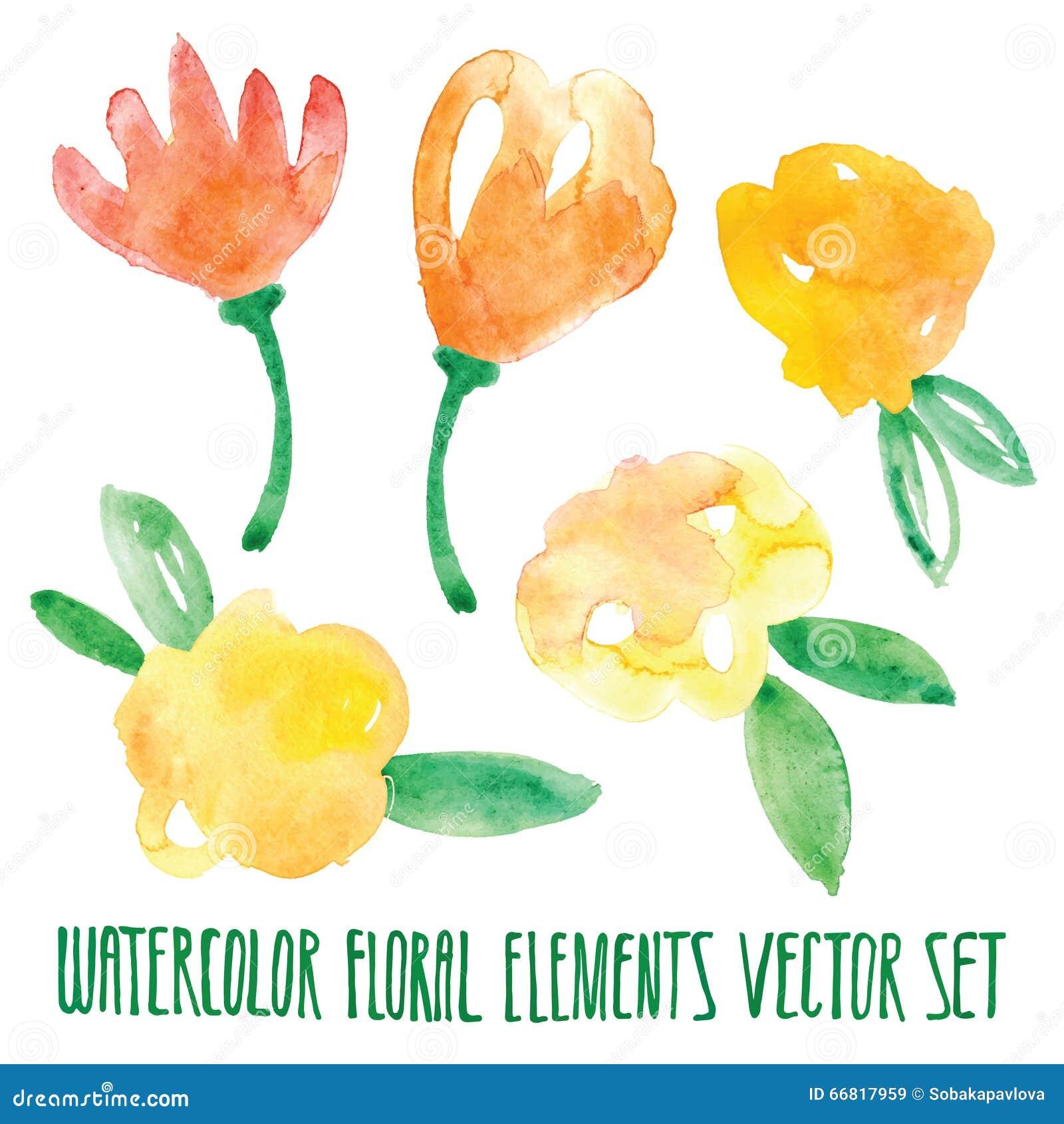Διανυσματικό floral σύνολο Ζωηρόχρωμη floral συλλογή με τα φύλλα και τα λουλούδια, που σύρουν το watercolor Σχέδιο άνοιξης ή καλο