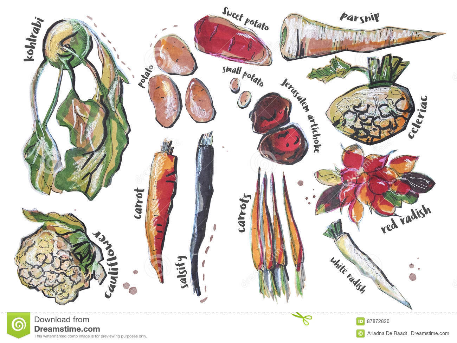 Διαφορετικά τμήματα τροφίμων, που απομονώνονται στο λευκό