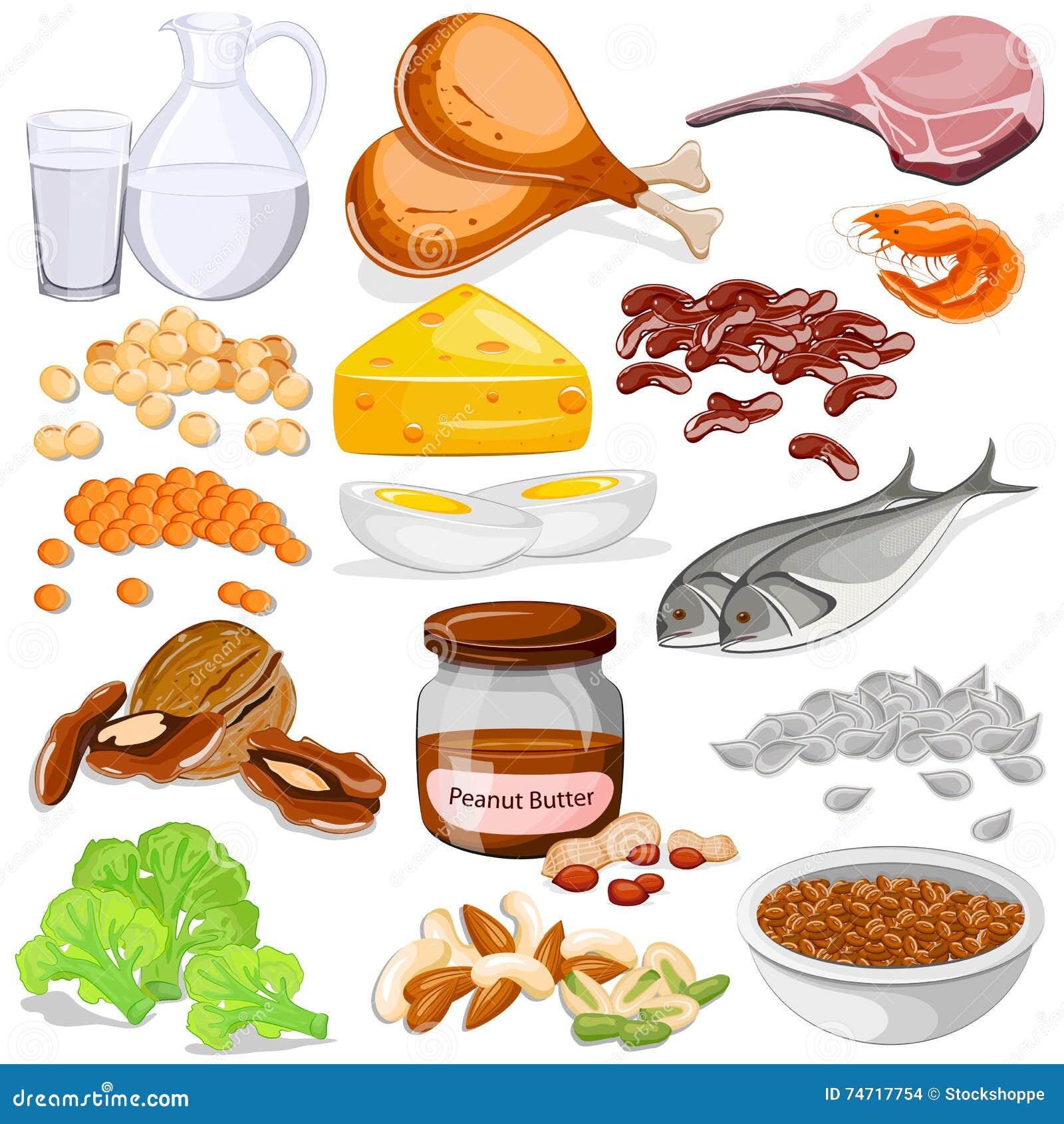 Διαφορετική συλλογή τροφίμων πηγών λευκώματος