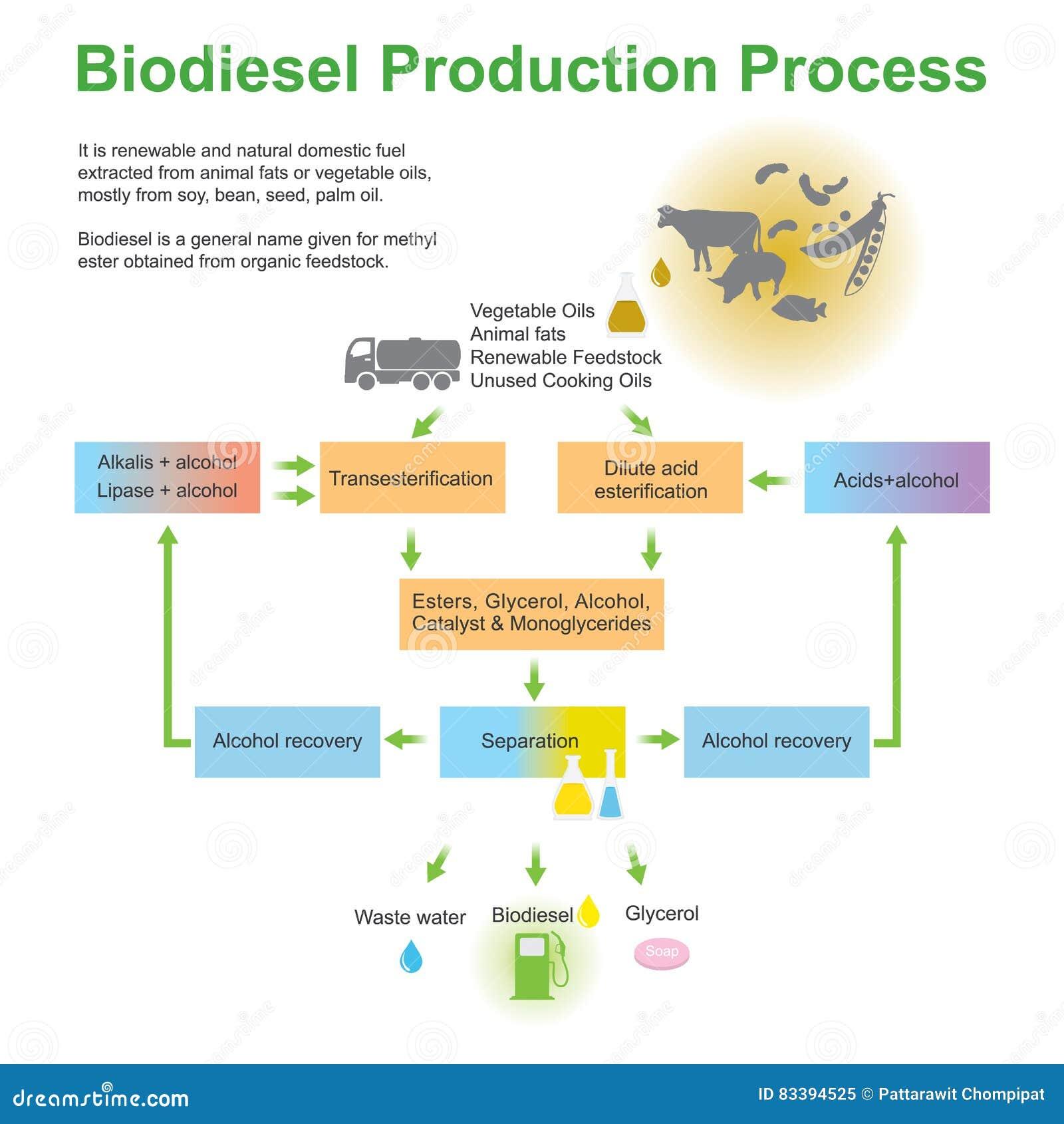 Διαδικασία παραγωγής biodiesel