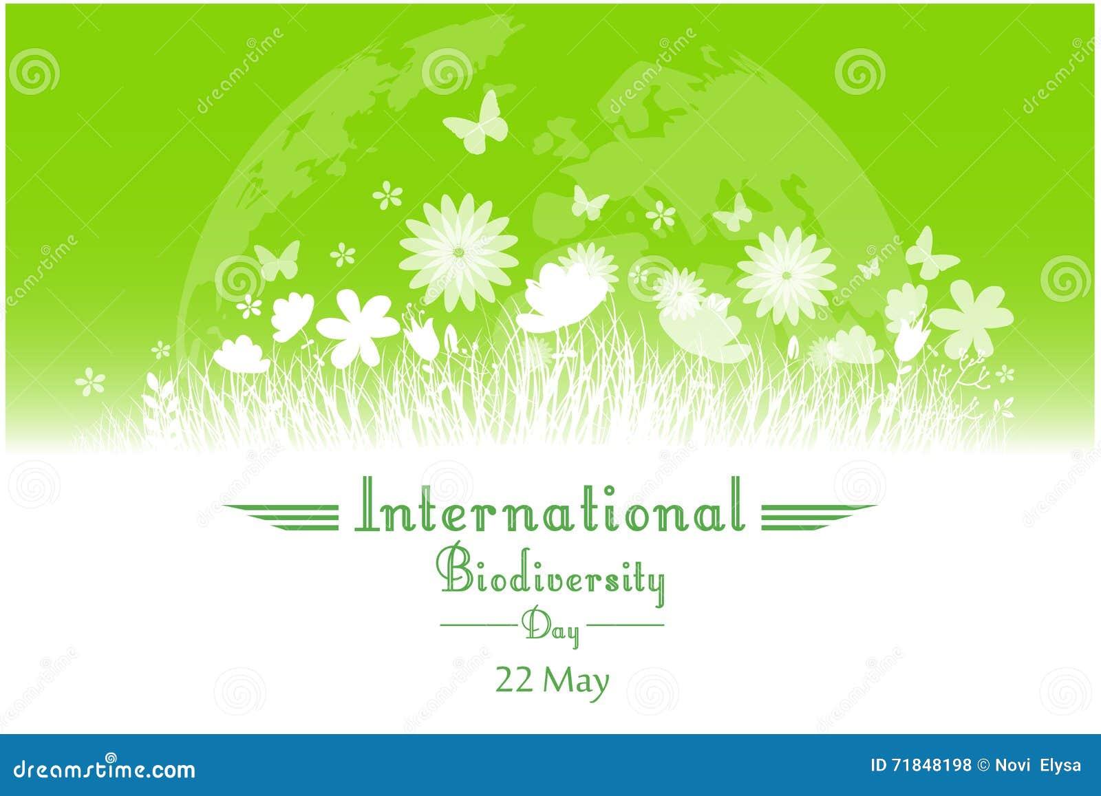 Διεθνές υπόβαθρο ημέρας βιοποικιλότητας με το λουλούδι, τις πεταλούδες και τη σκιαγραφία χλόης