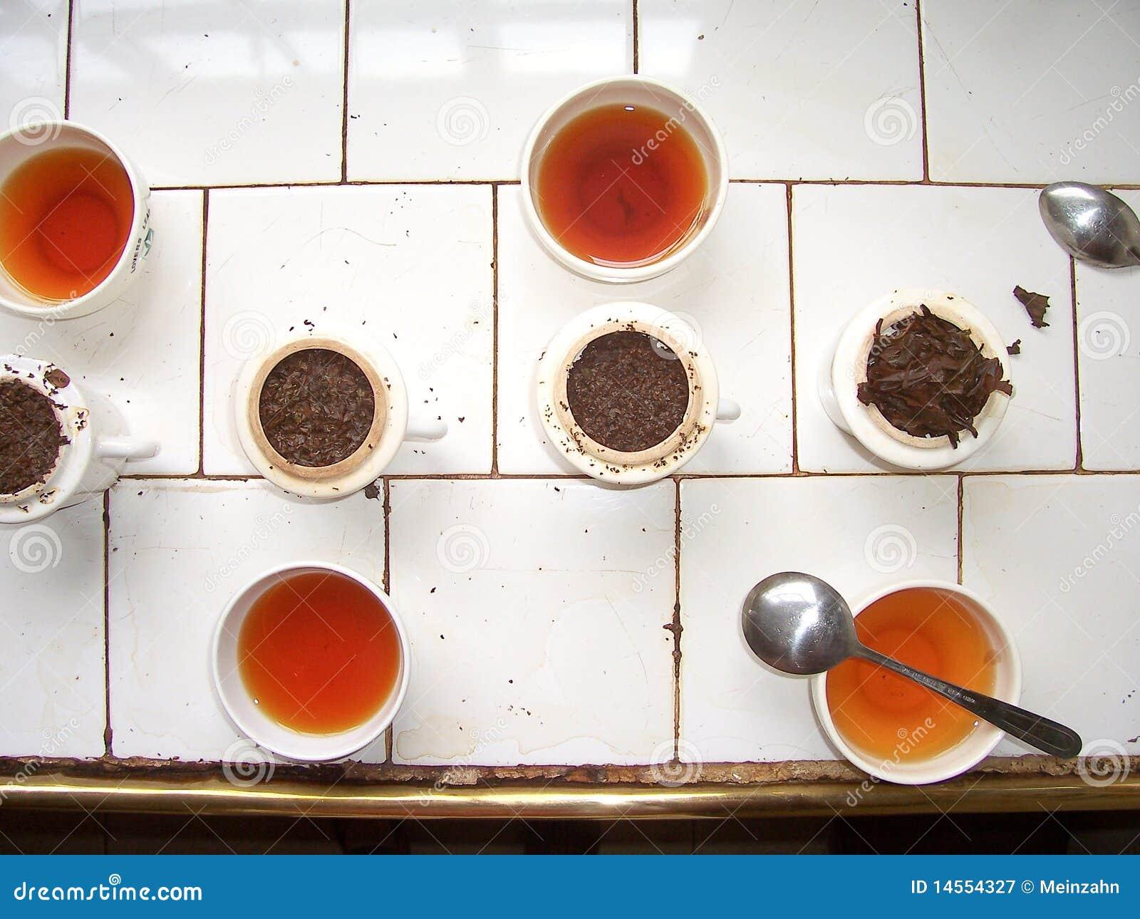 δοκιμάζοντας τσάι εργοσ