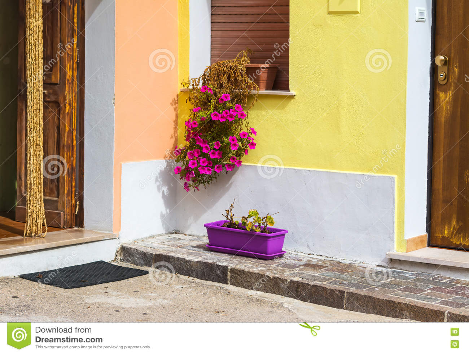 Δοχεία λουλουδιών και ξύλινες πόρτες