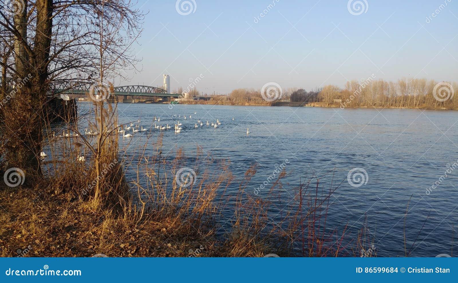 Δούναβης