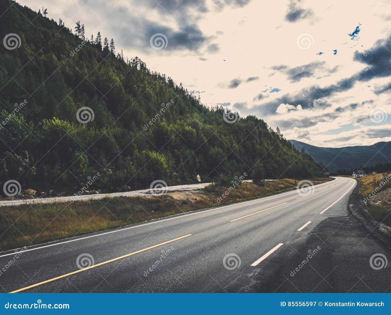 Δρόμος με το δάσος στον τονισμό μεταλλινών