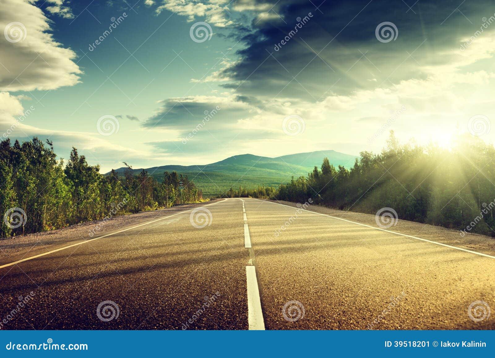 Δρόμος στο θερινό δάσος