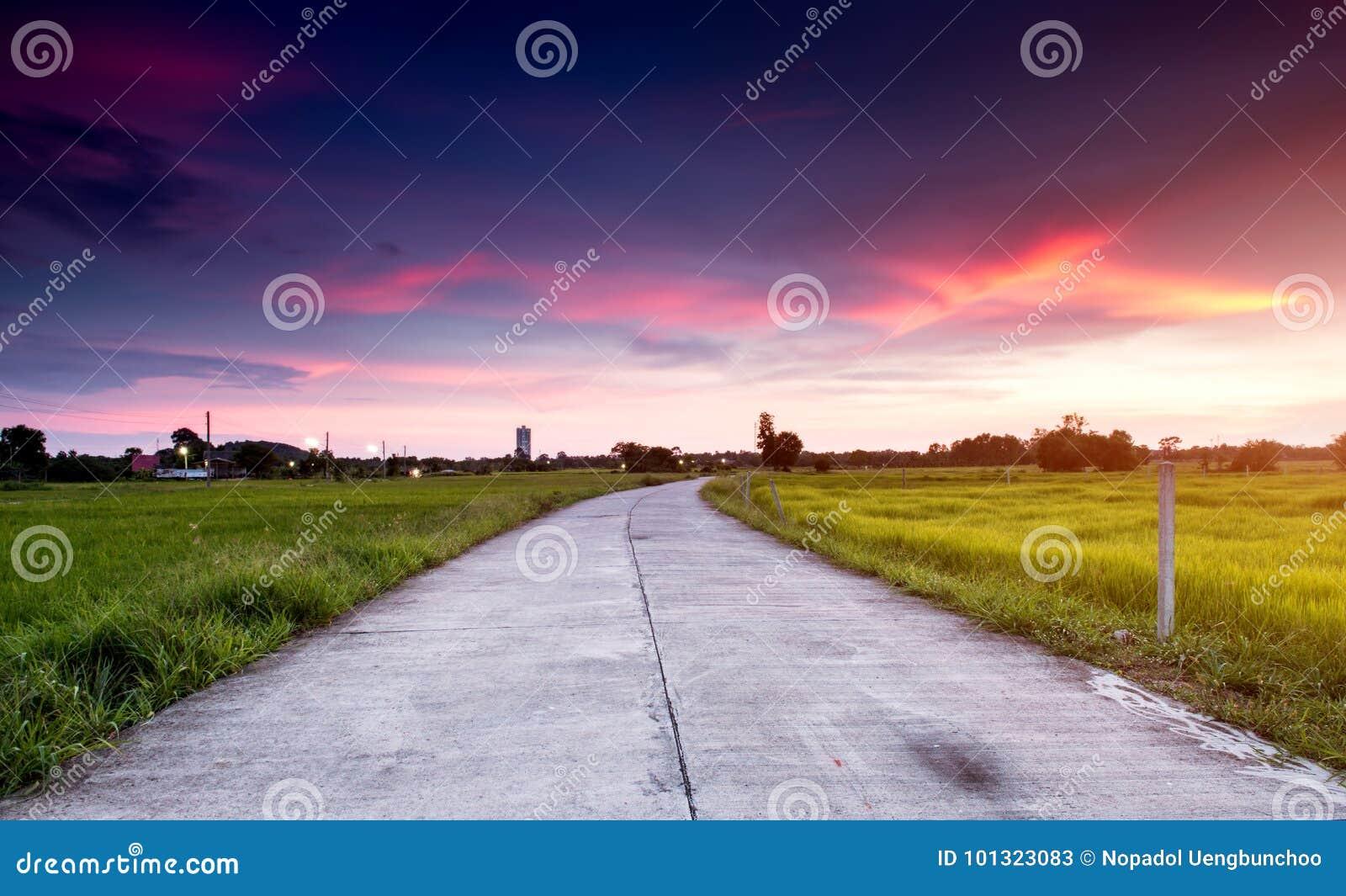 Δρόμος τσιμέντου στον πράσινο τομέα στην πλευρά χωρών