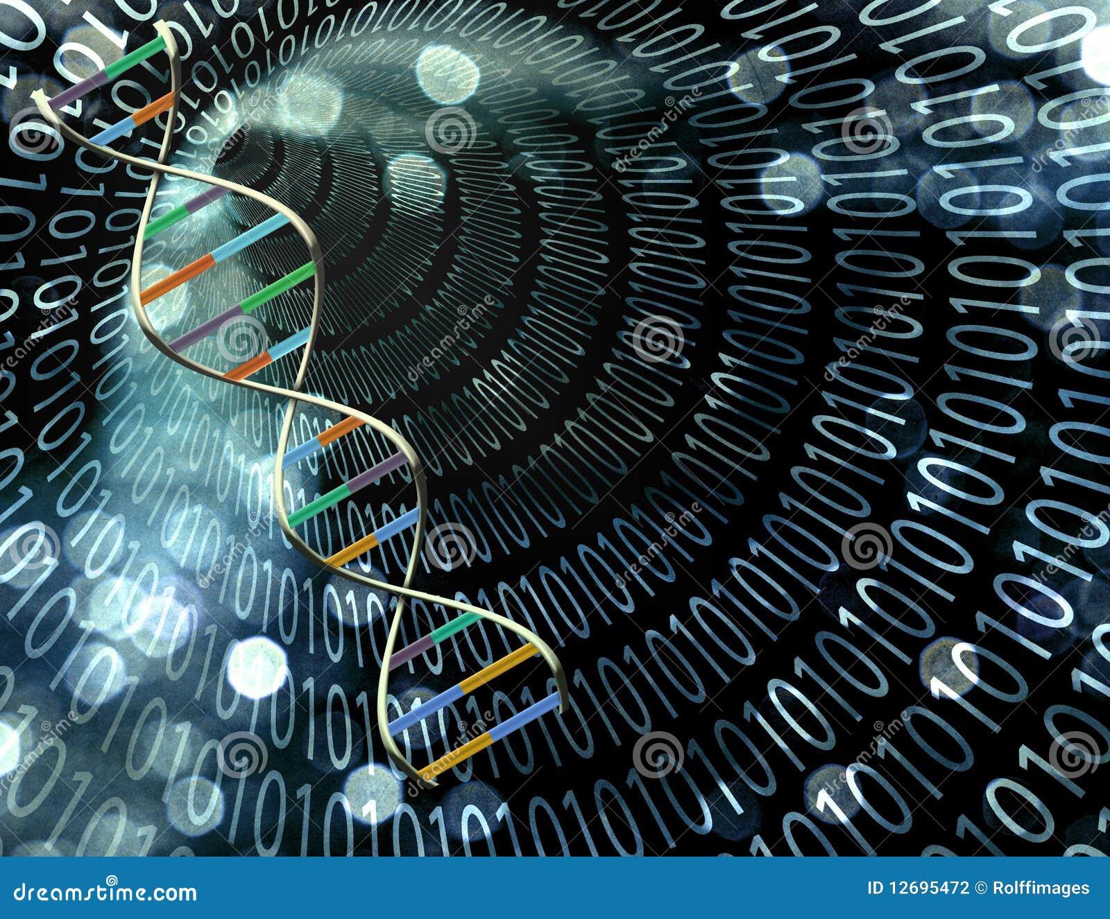 δυαδική σήραγγα DNA