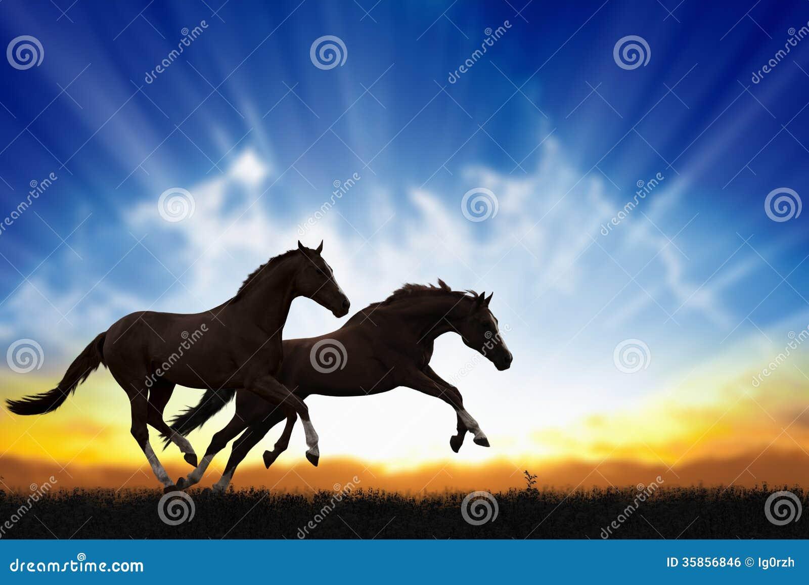 Δύο άλογα τρεξίματος