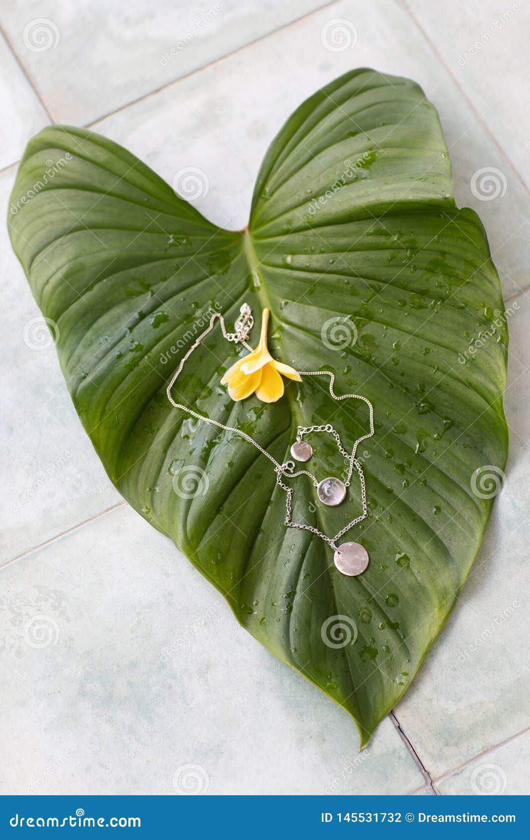 Δύο ασημένια κρεμαστά κοσμήματα βρίσκονται σε ένα μεγάλο τροπικό πράσινο φύλλο