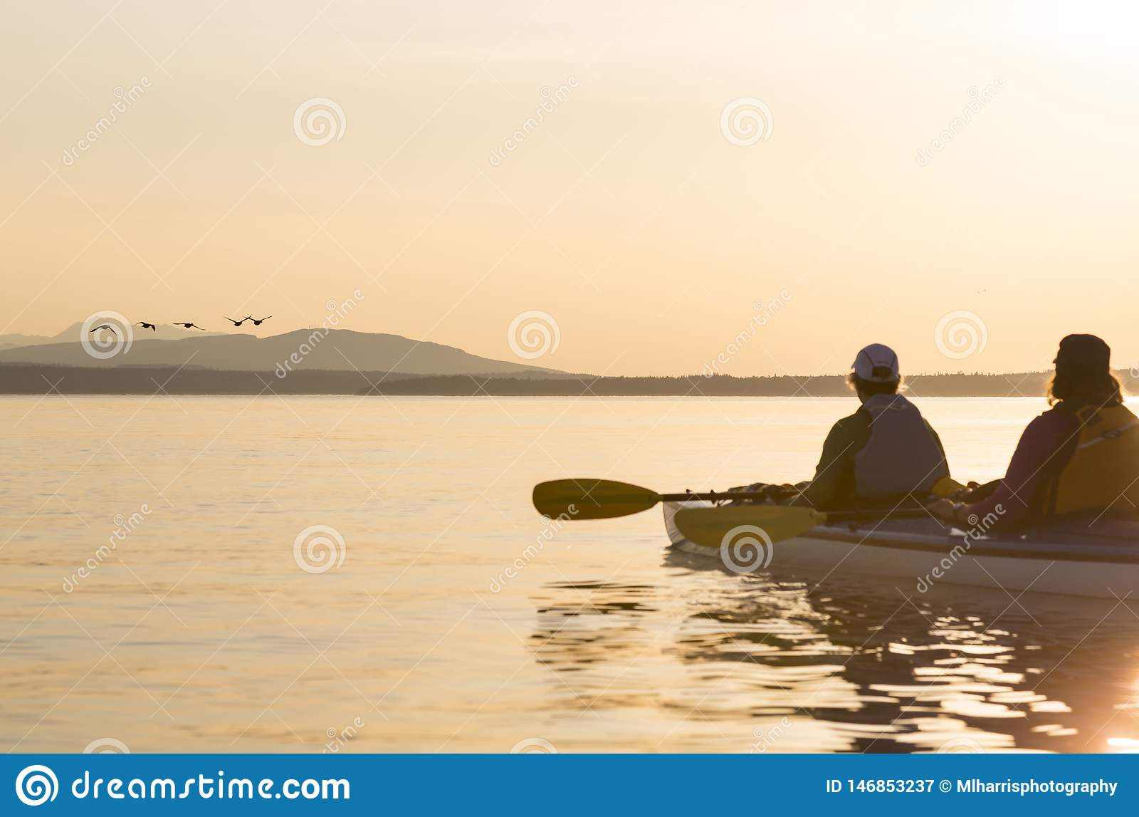 Δύο γυναίκες σε μια προσοχή πουλιών καγιάκ θάλασσας Άνθρωποι που απολαμβάνουν τους υγιή τρόπους ζωής, τη φύση και την άγρια φύση