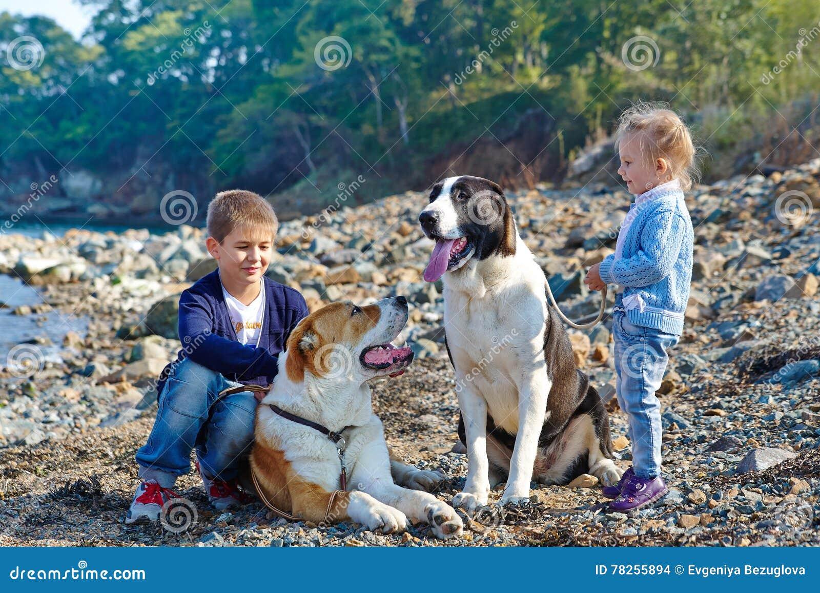 Δύο παιδιά, δύο μεγάλα σκυλιά στην ακτή