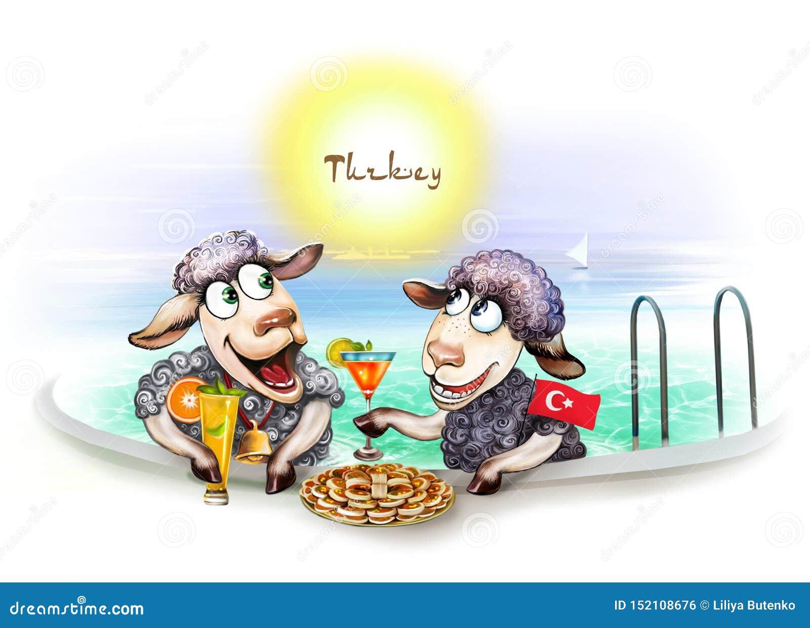 Δύο πρόβατα σε ένα ξενοδοχείο στην Τουρκία