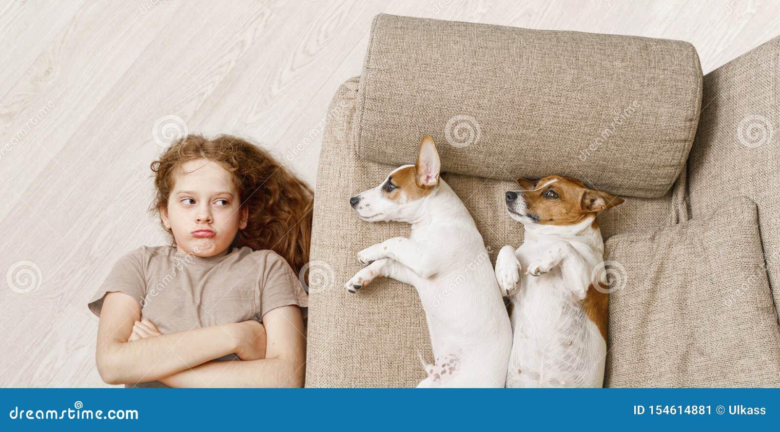 Δύο σκυλιά κοιμούνται στον μπεζ καναπέ και το δυστυχισμένο κορίτσι στο ξύλινο πάτωμα