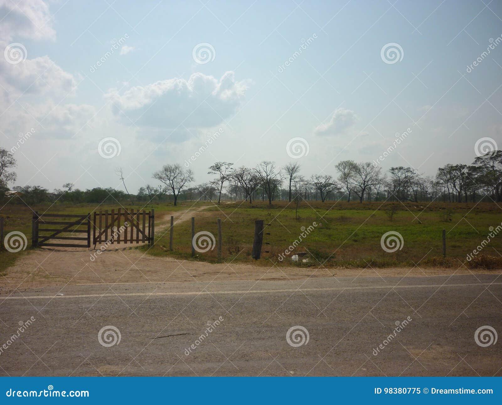 Είσοδος τομέων
