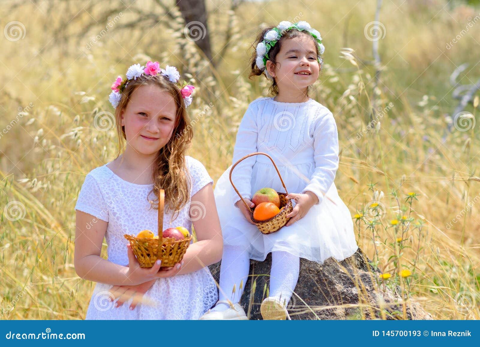 Εβραϊκές διακοπές Shavuot Τα μικρά κορίτσια HarvestTwo στο άσπρο φόρεμα κρατούν ένα καλάθι με τους νωπούς καρπούς σε έναν τομέα σ