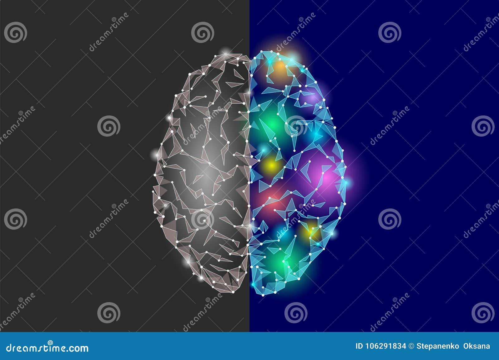 Εγκέφαλος δημιουργικών και μερών λογικής Analytics εποικοδομητική καλλιτεχνική φαντασίας λειτουργία μυαλού ημισφαιρίου δευτερεύου