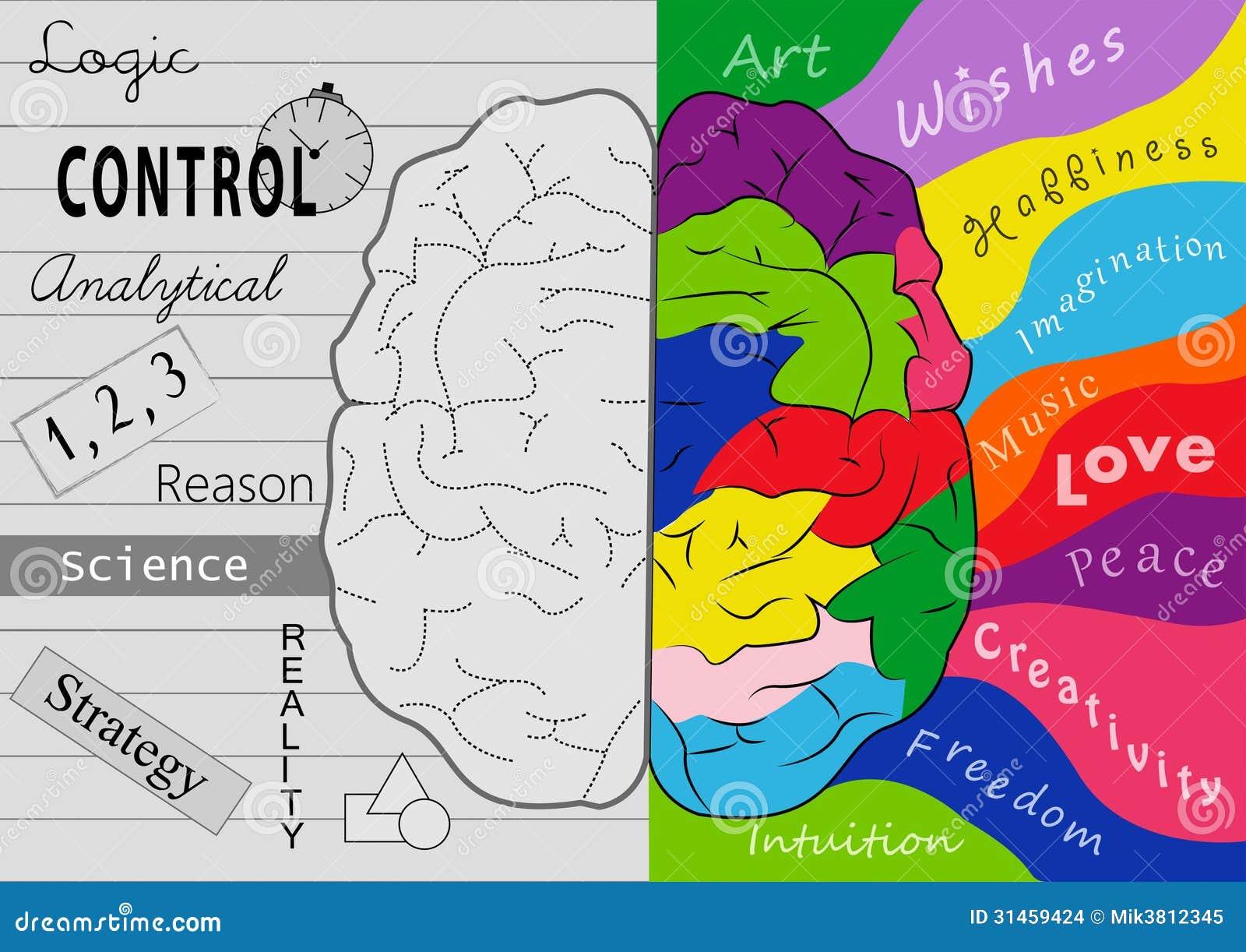 Εγκέφαλος δημιουργικότητας
