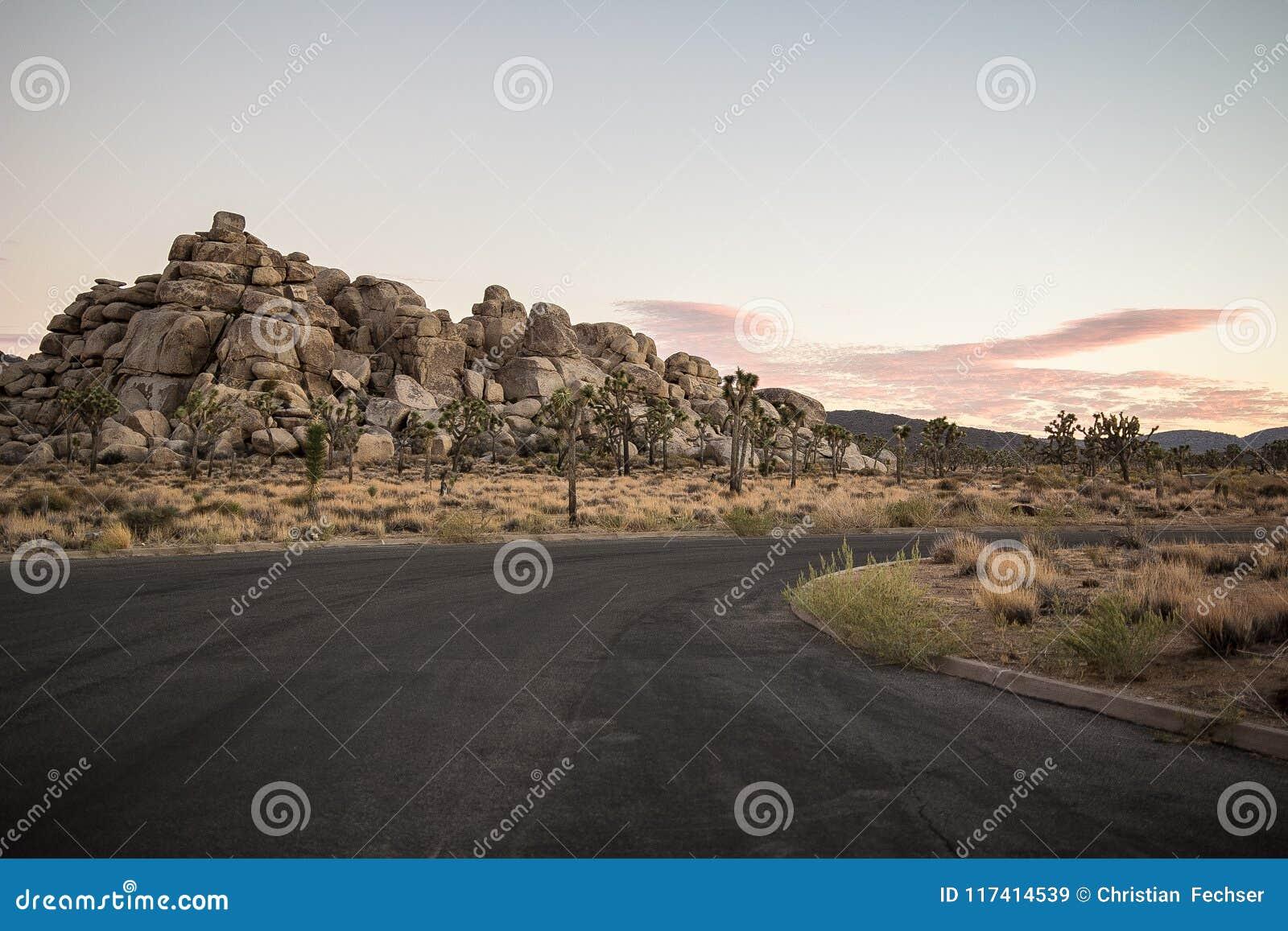 Εθνικό πάρκο δέντρων του Joshua, Καλιφόρνια