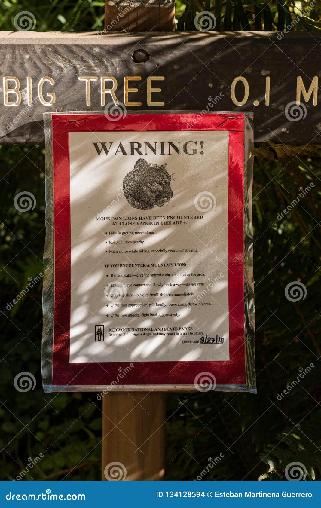 Ειδοποίηση στην είσοδο ένα από τα ίχνη για τα λιοντάρια βουνών που διακρίνουν στο εθνικό πάρκο Redwood, Καλιφόρνια, ΗΠΑ