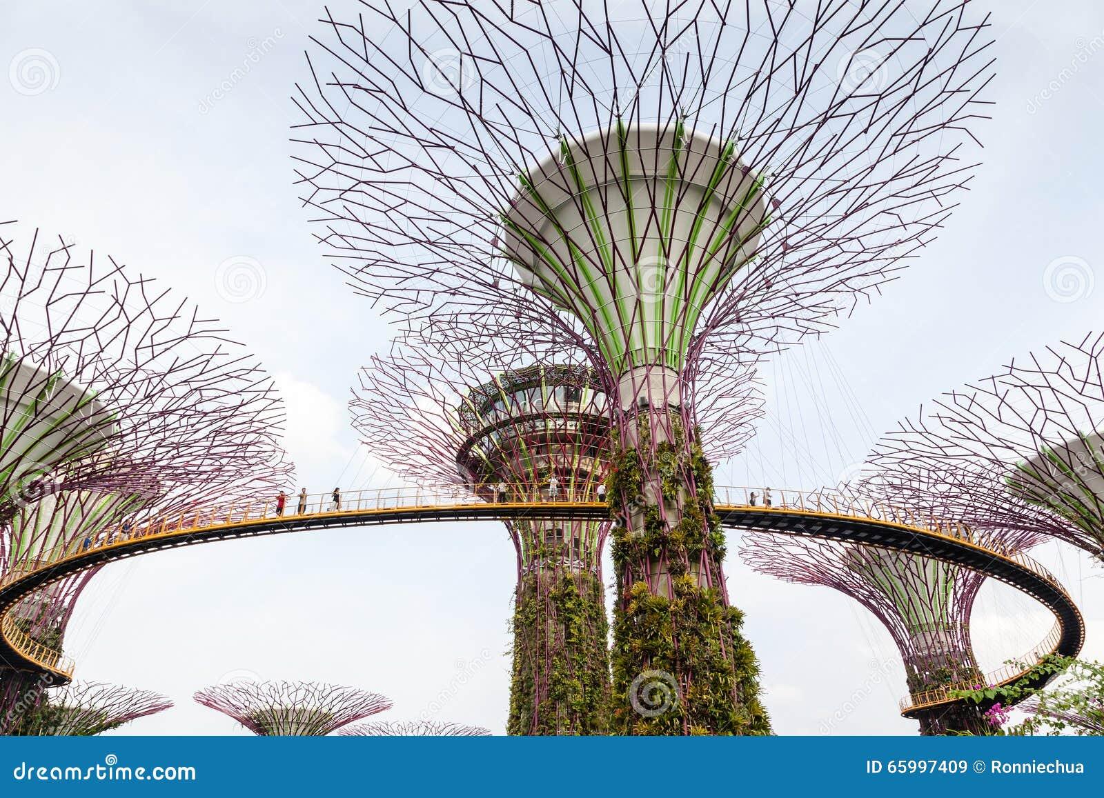 Εικονικό άλσος Supertree στους κήπους από τον κόλπο