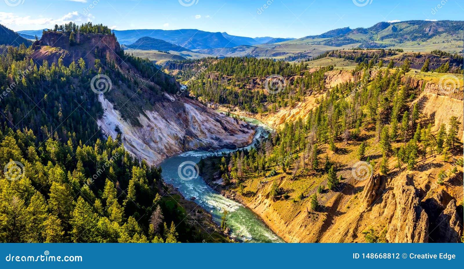 Εικόνα αποθεμάτων Geyser δυτικών αντίχειρων της λεκάνης, εθνικό πάρκο Yellowstone, ΗΠΑ