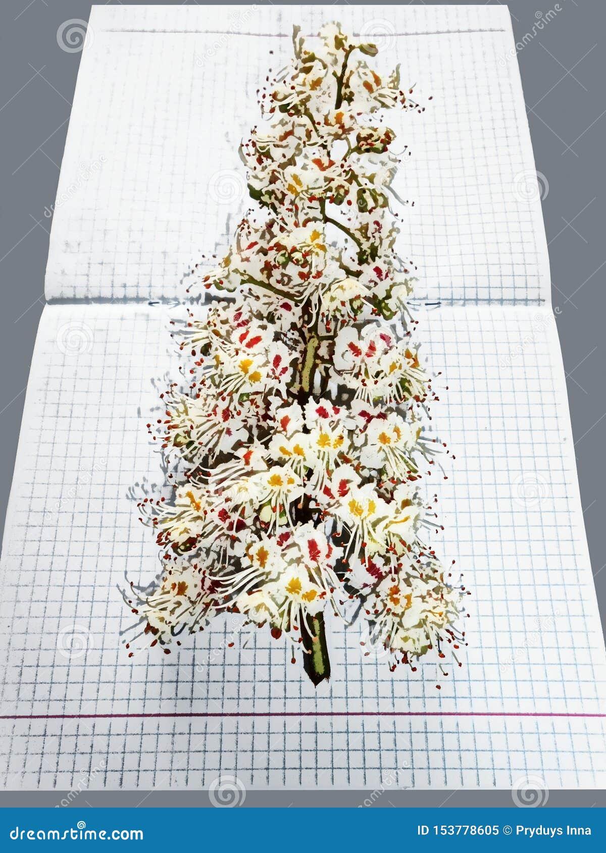 Εικόνα με τα λουλούδια και γκρίζος που τακτοποιείται