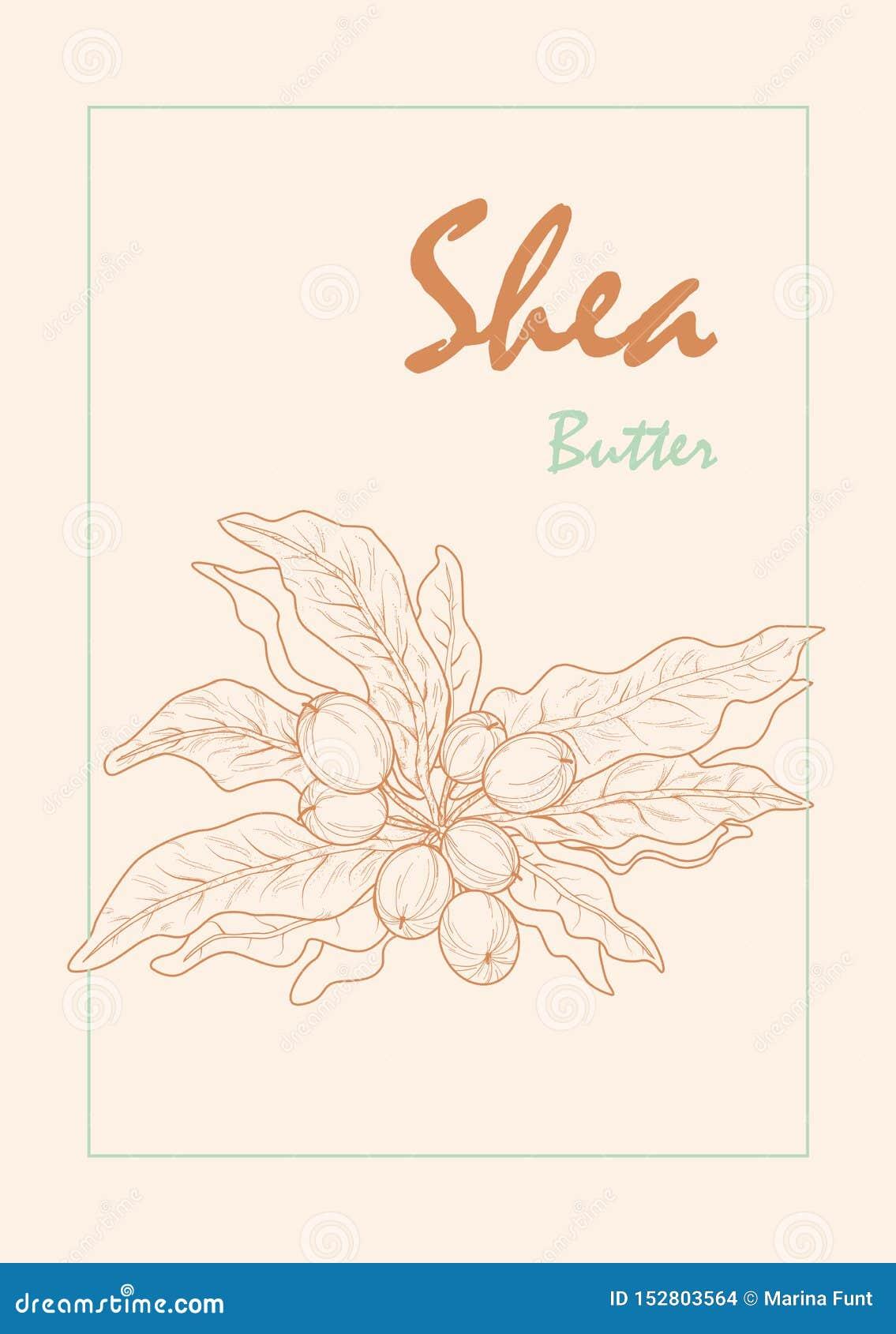 Εικόνα Counterstorm shea των καρυδιών στα μαλακά χρώματα