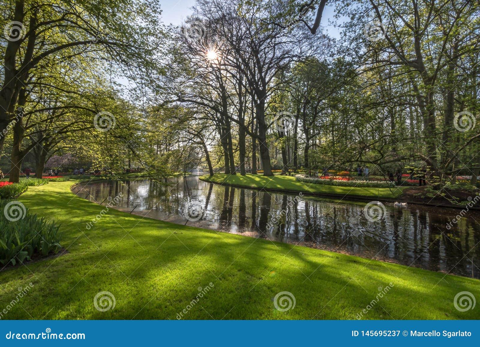 Ειρηνική γωνία με τα λουλούδια και νερό στους κήπους Keukenhof