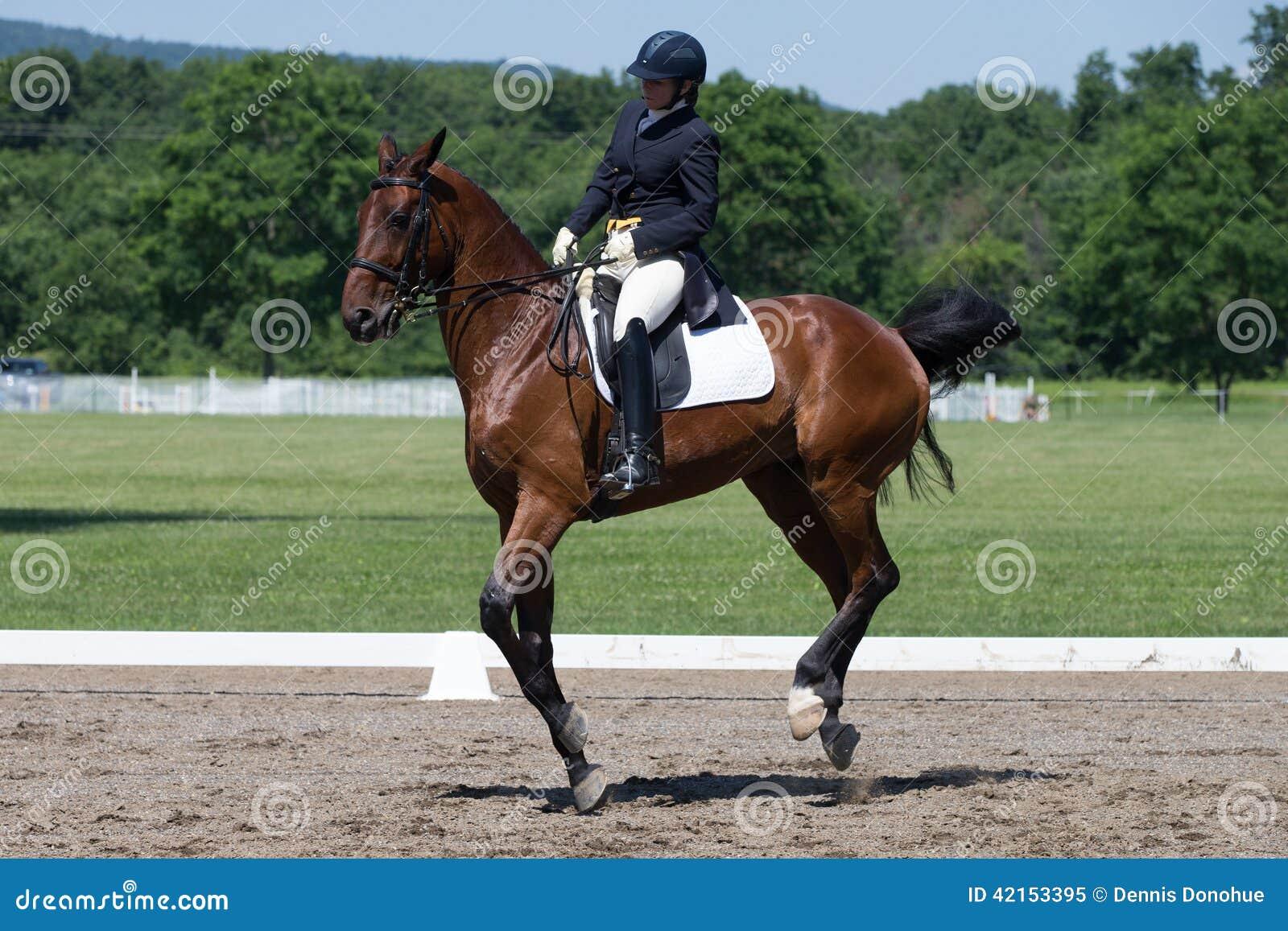 Εκπαίδευση αλόγου σε περιστροφές FEI Prix ST Georges