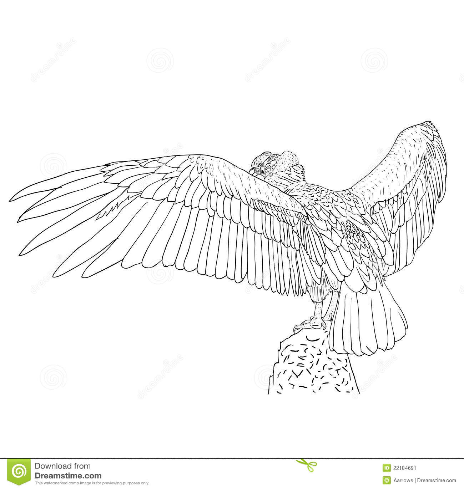 εκτενή φτερά γύπων