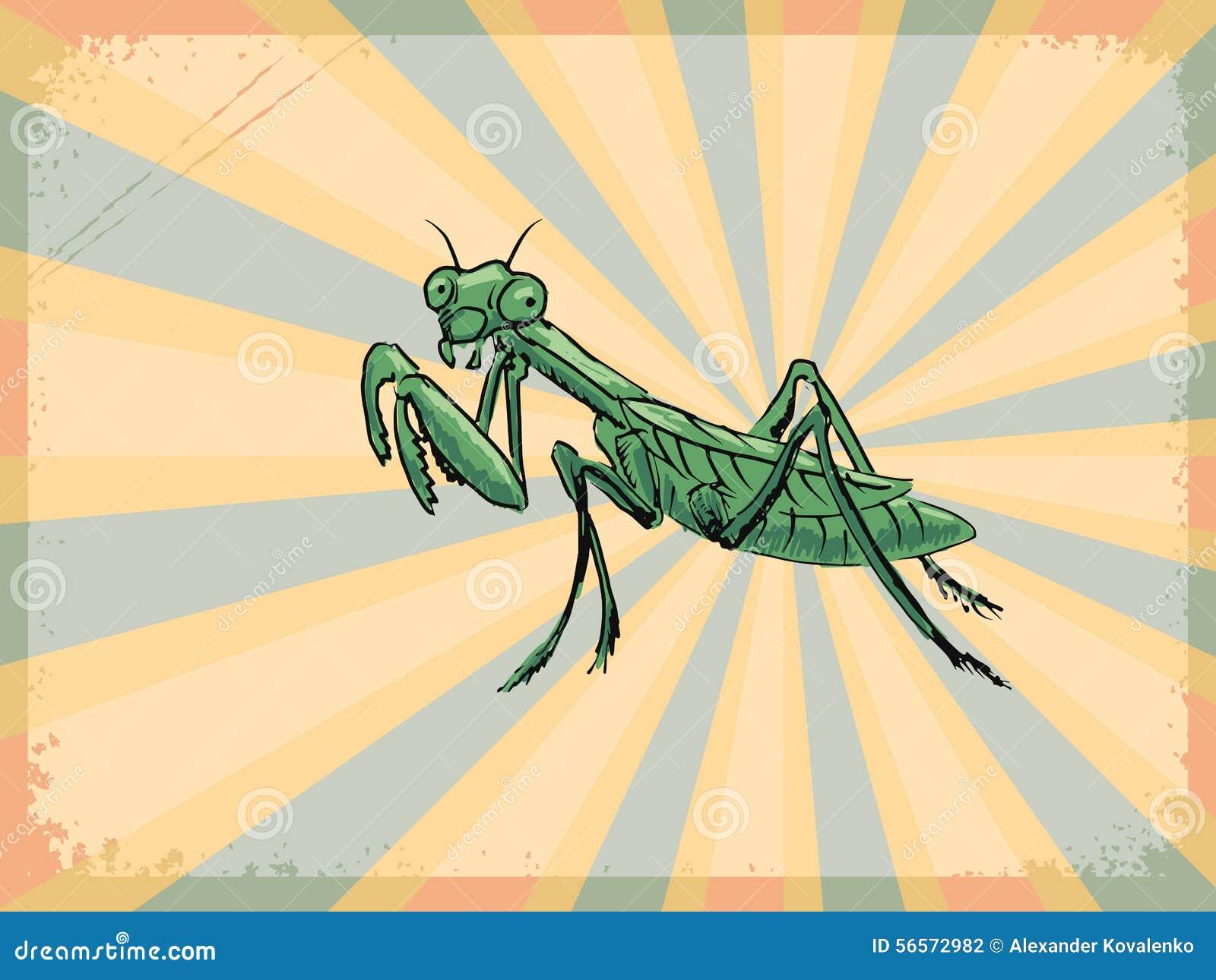 Download Εκλεκτής ποιότητας υπόβαθρο με τα Mantis Απεικόνιση αποθεμάτων - εικονογραφία από ανασκόπησης, mantis: 56572982