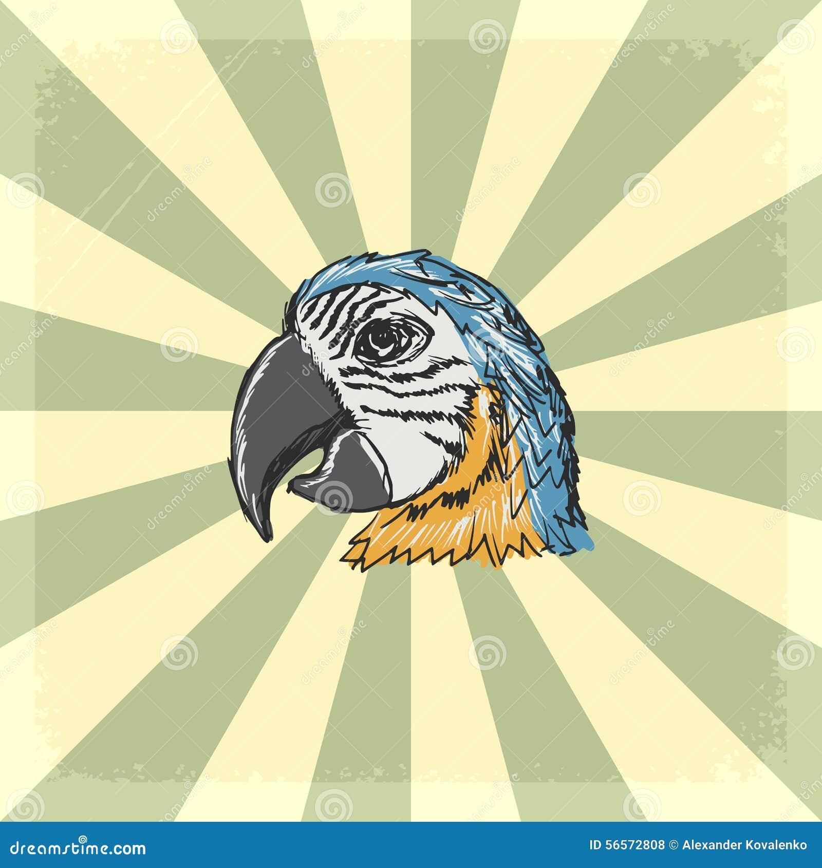 Download Εκλεκτής ποιότητας υπόβαθρο με τον παπαγάλο Απεικόνιση αποθεμάτων - εικονογραφία από ανασκόπησης, τραχύς: 56572808