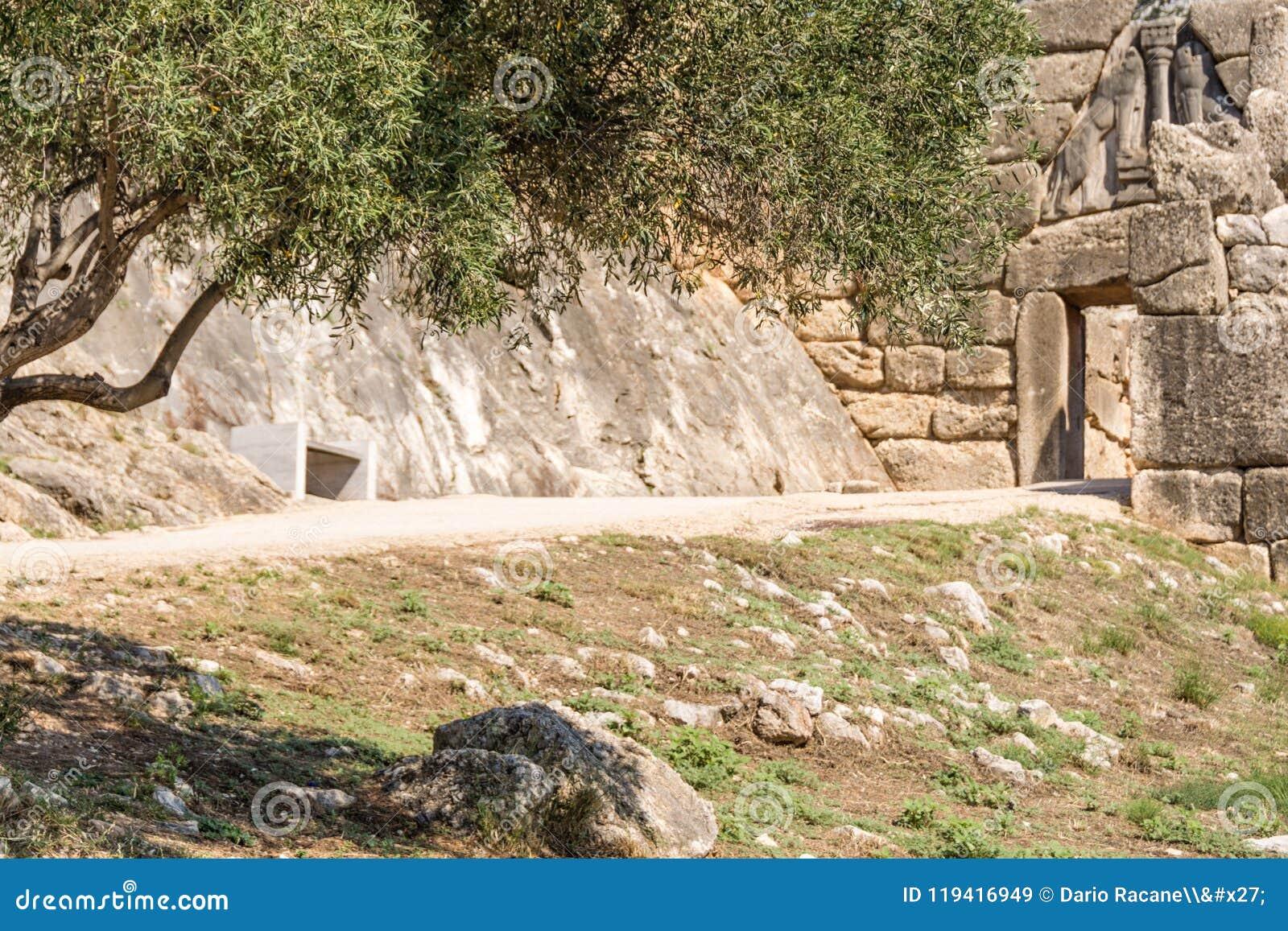 Ελιά μπροστά από την πύλη λιονταριών, Mycenae, Ελλάδα