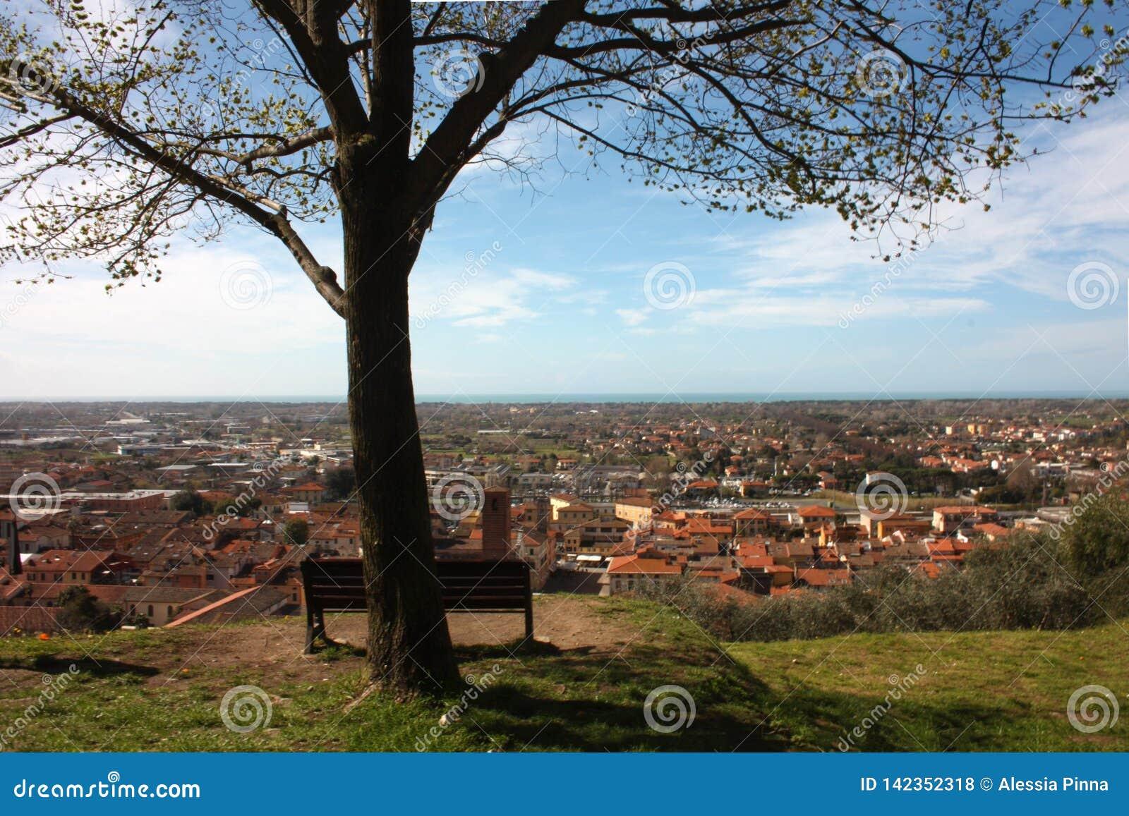 Εναέρια άποψη από έναν λόφο ένα ήρεμο, πράσινο, ήρεμο και ειρηνικό δημόσιο πάρκο ένας απόμερος πάγκος, ένα δέντρο και μια άποψη τ