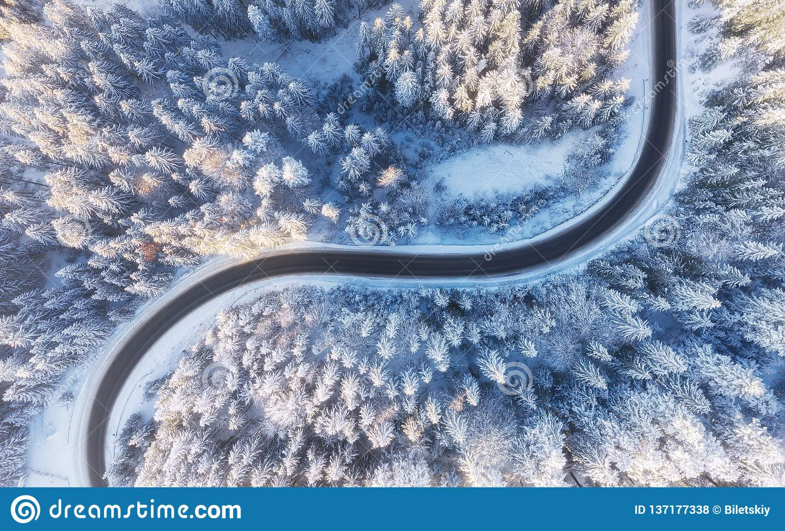 Εναέρια άποψη σχετικά με το δρόμο και το δάσος στο χειμώνα Φυσικό χειμερινό τοπίο από τον αέρα Δάσος κάτω από το χιόνι ο χειμώνας