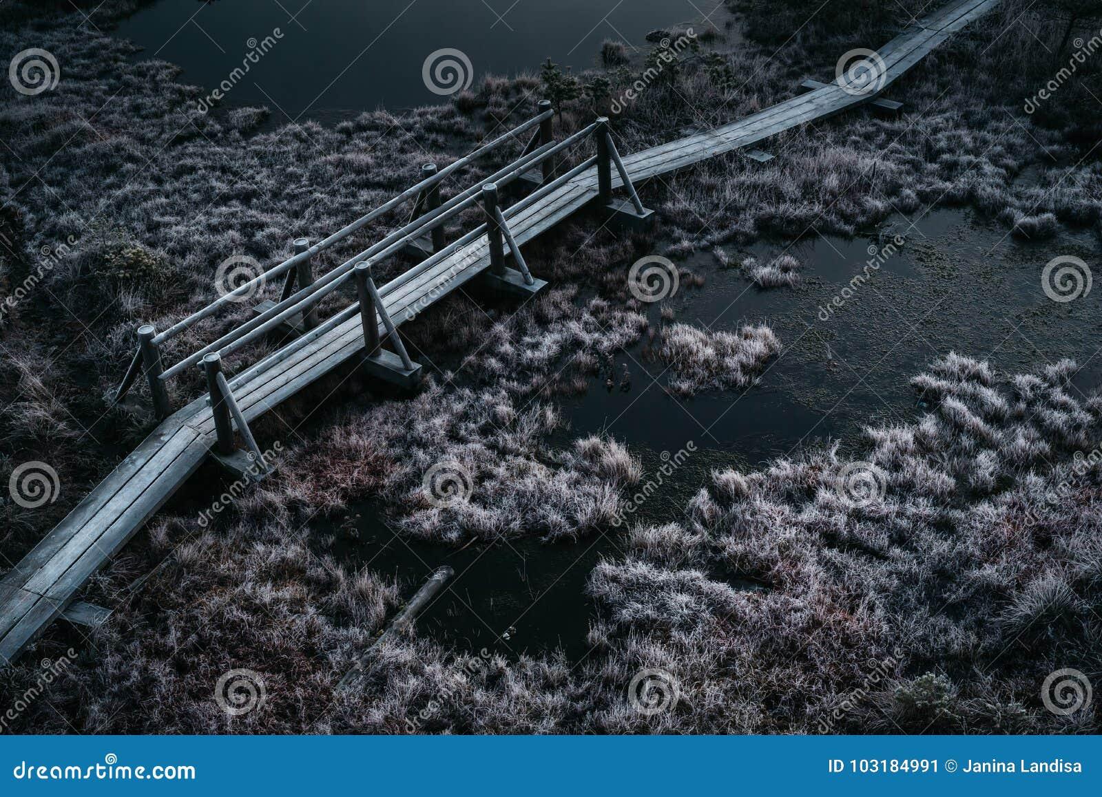 Εναέρια άποψη της ξύλινης πορείας, δρόμος στο έλος στον πρώιμο χειμώνα mornin