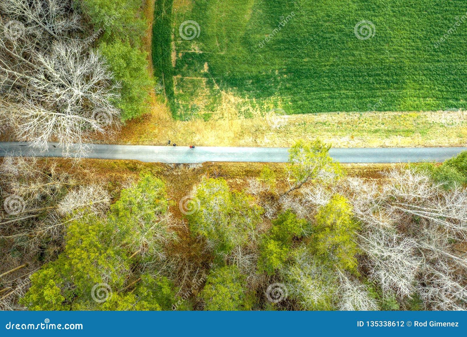 Εναέρια άποψη του στρωμένου ίχνους πεζοπορίας δασικό σε greenway στην Ατλάντα