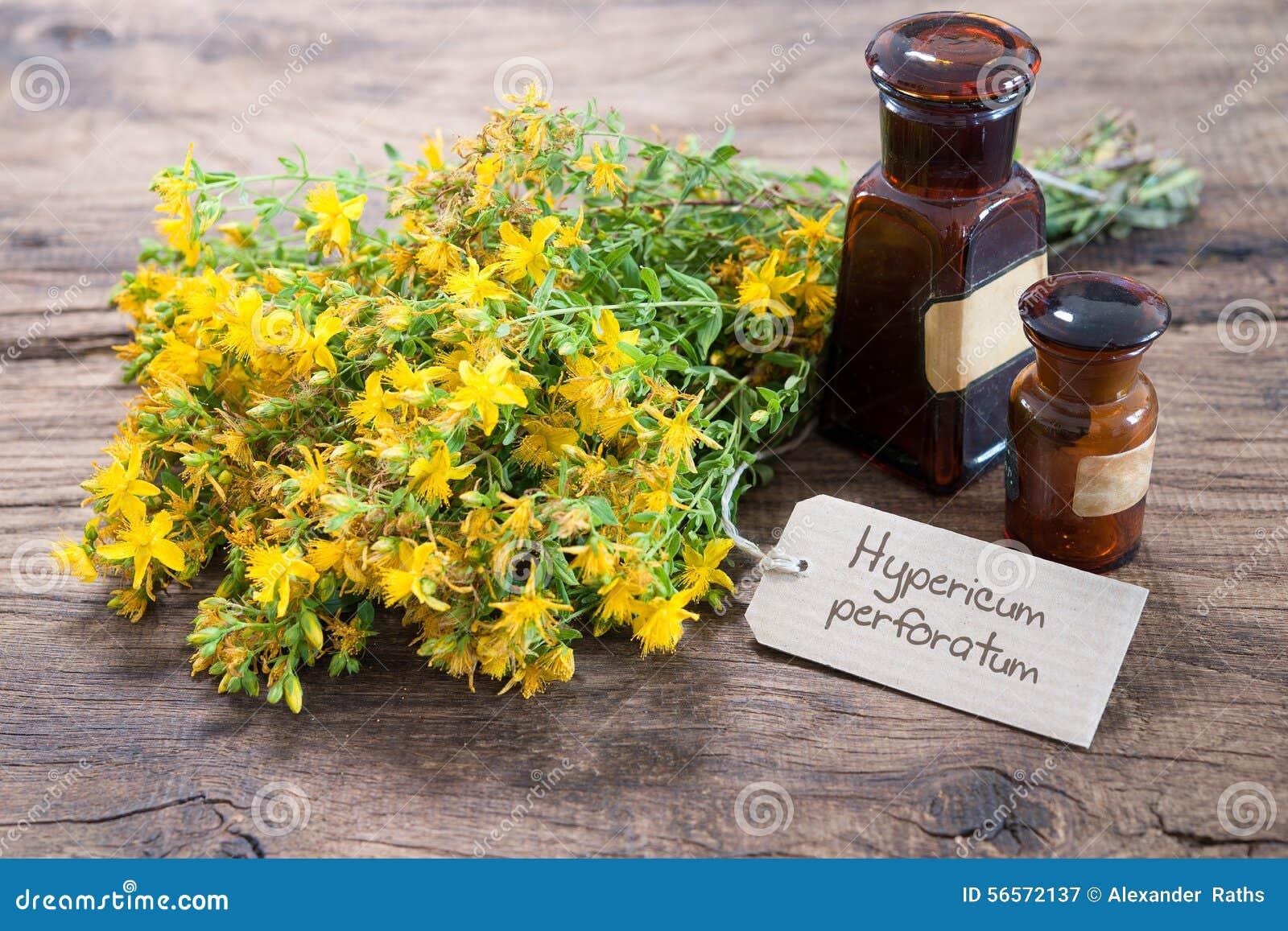Download Εναλλακτική ιατρική, βοτανική ιατρική Στοκ Εικόνα - εικόνα από θεραπεία, ανασκόπησης: 56572137
