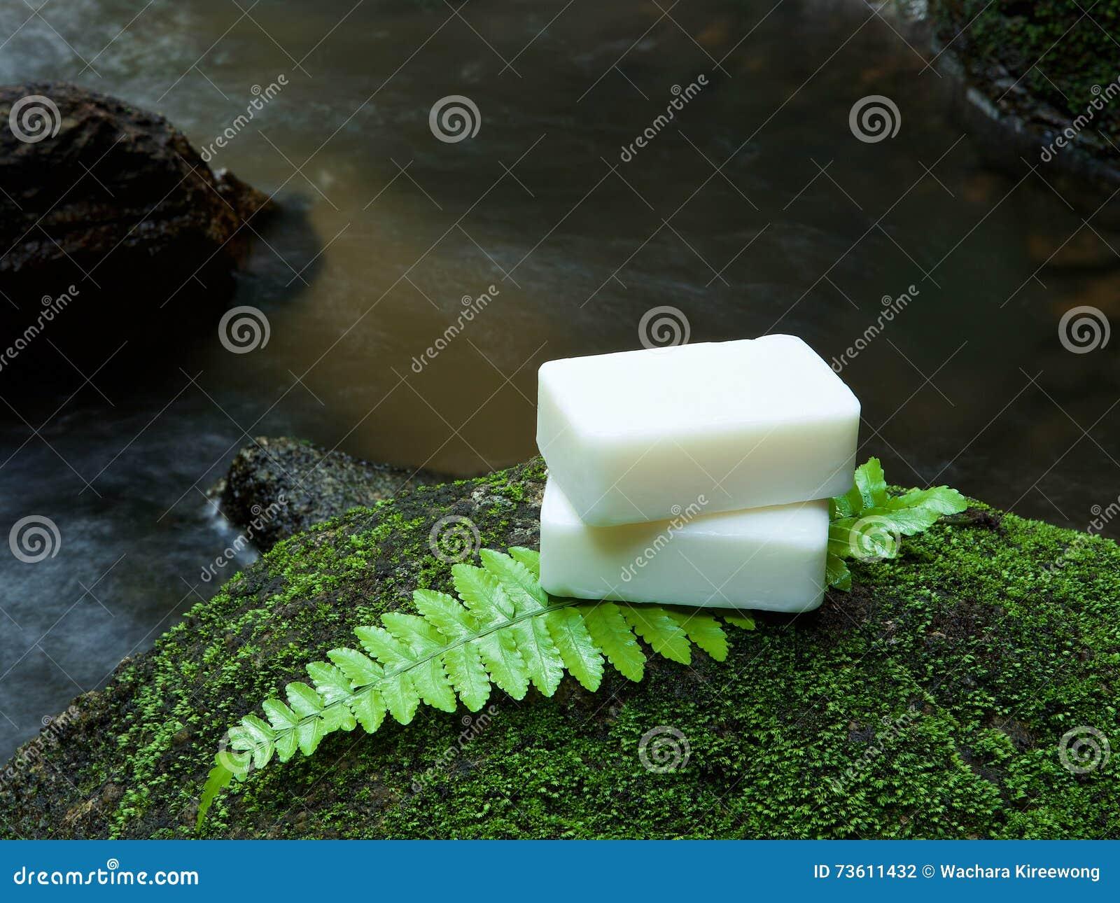 Εναλλακτικό σπιτικό σαπούνι φροντίδας δέρματος στην πέτρα, πράσινο φύλλο με το TR