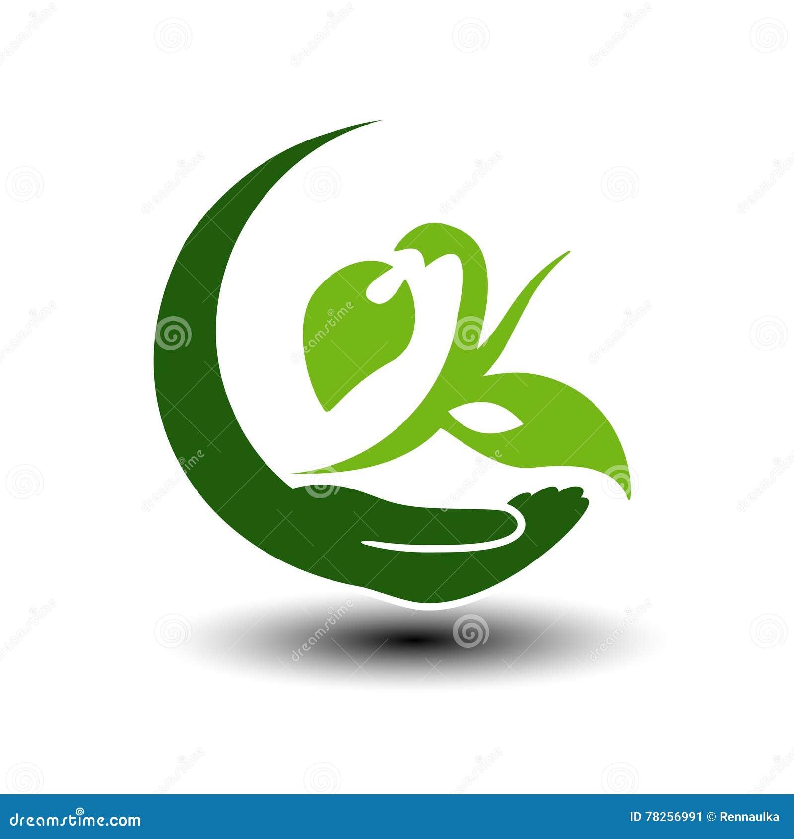 ενεργειακό πράσινο σύμβο& Κυκλικό φυσικό στοιχείο Χέρι και φυτό με το φύλλο Εικονίδιο φύσης