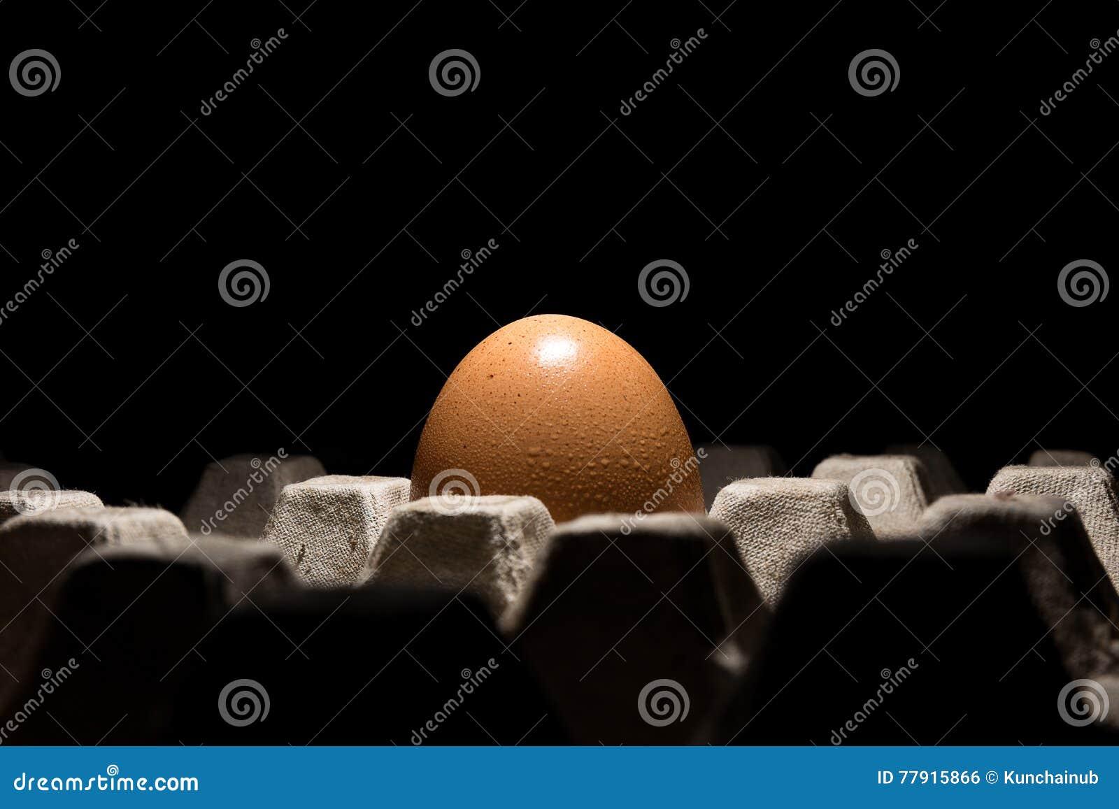 Ενιαίο φρέσκο αυγό κοτόπουλου στο δίσκο με το μαύρο υπόβαθρο