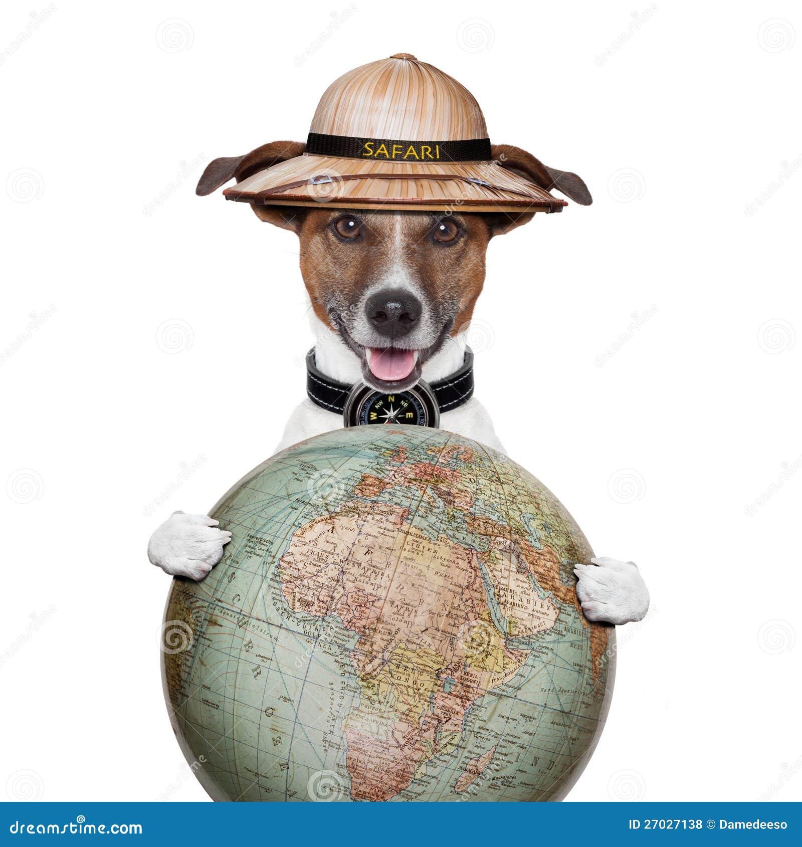 Εξερευνητής σαφάρι σκυλιών πυξίδων σφαιρών ταξιδιού