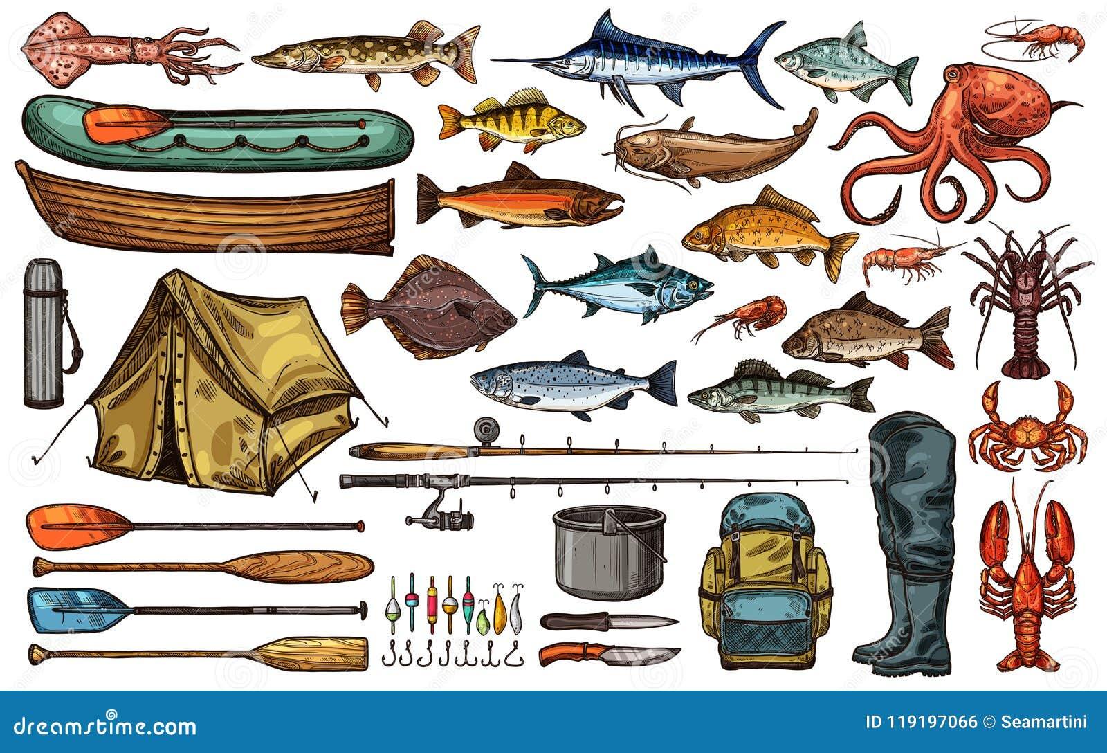 Εξοπλισμός αλιείας και σκίτσο ψαριών τροπαίων ψαράδων