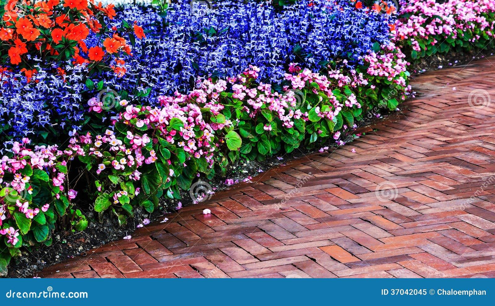 Εξωραϊσμός στον κήπο