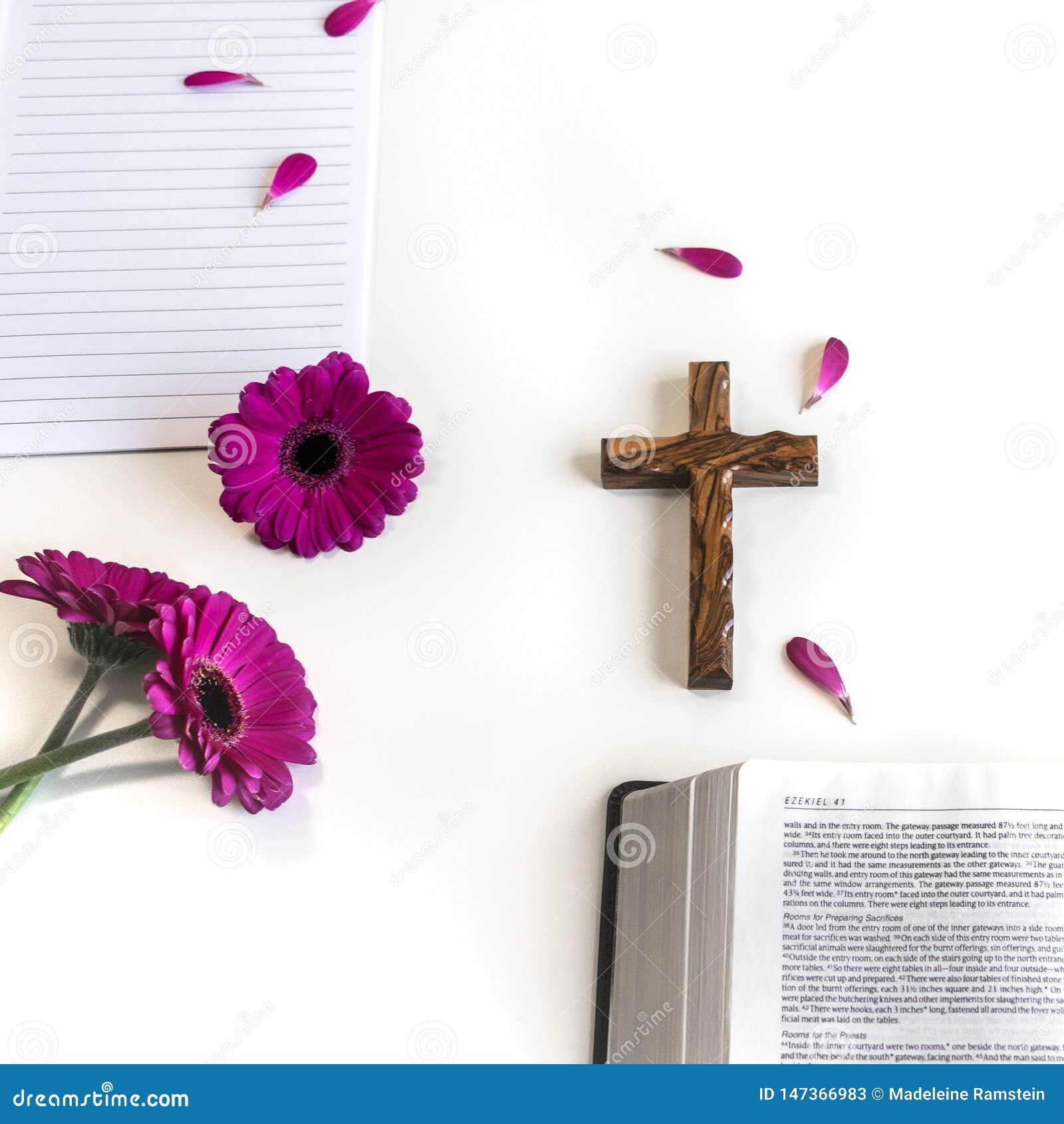 Επίπεδος βάλτε: ανοικτή Βίβλος, ξύλινο διαγώνιο, ανοικτό περιοδικό στο άσπρο υπόβαθρο και ρόδινος, πορφυρός, violette, κόκκινο λο