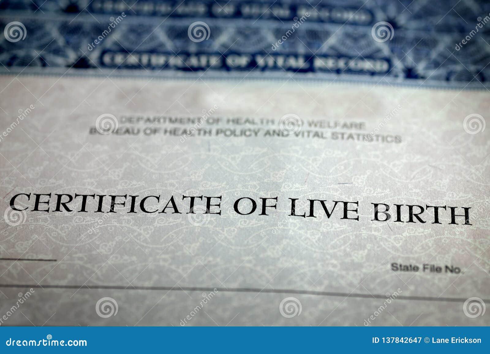 Επίσημο μωρό εγγράφου μορφής πιστοποιητικών γέννησης γεννημένο