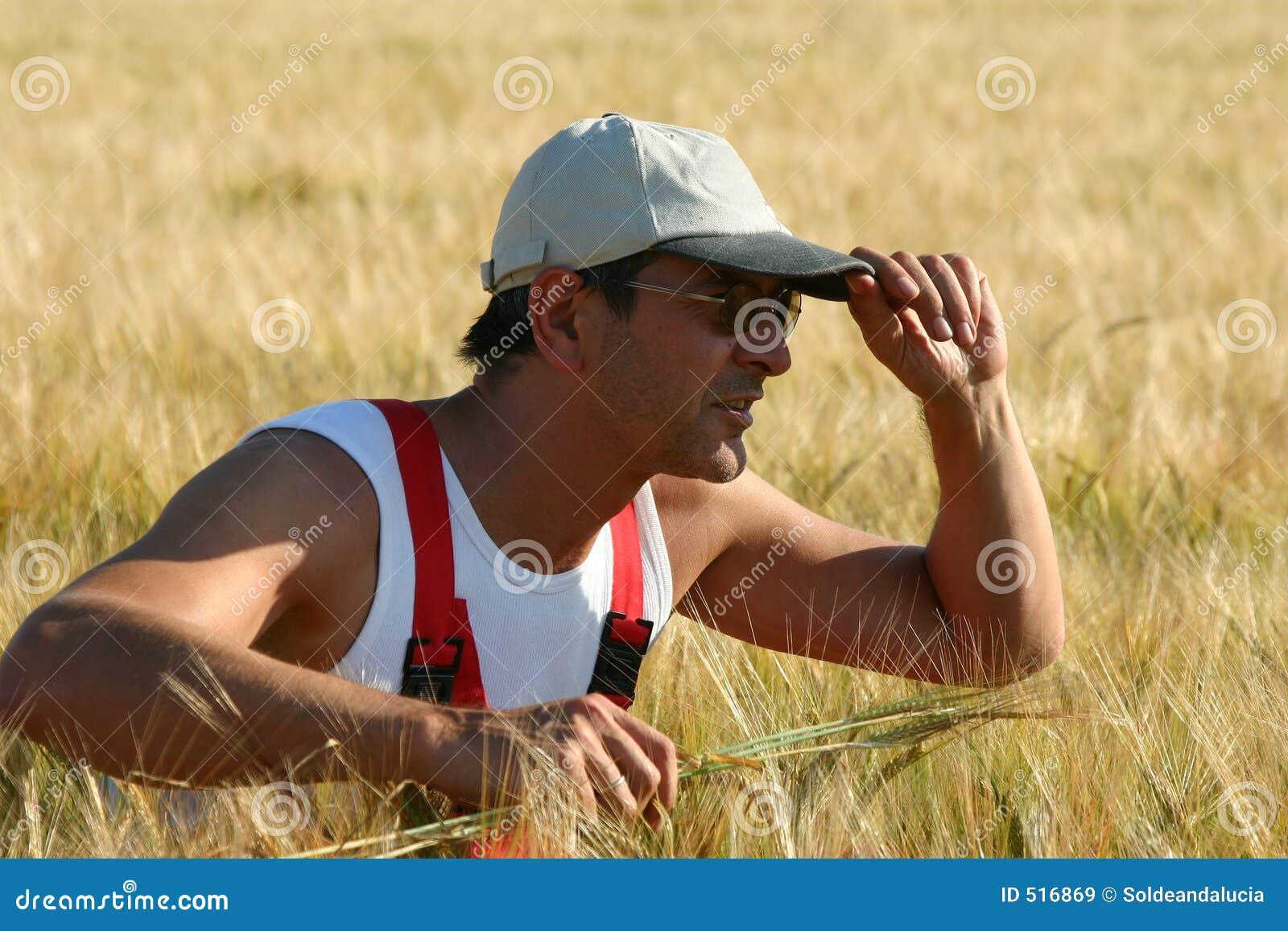επιθεώρηση αγροτών κριθα