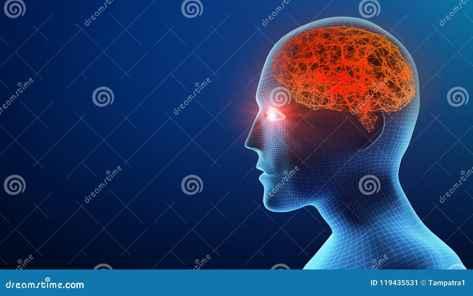 επικεφαλής άνθρωπος εγ&ka Ασθένεια του Alzheimer ` s Πρότυπο Wireframe